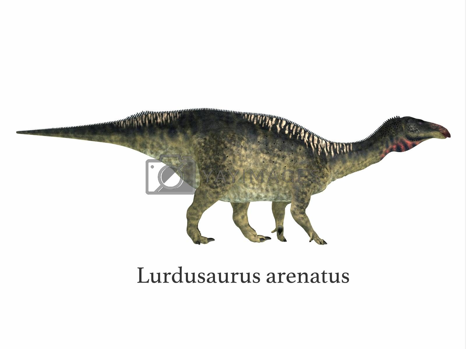 Lurdusaurus was a herbivorous ornithopod iguanodont dinosaur that lived in Niger in the Cretaceous Period.
