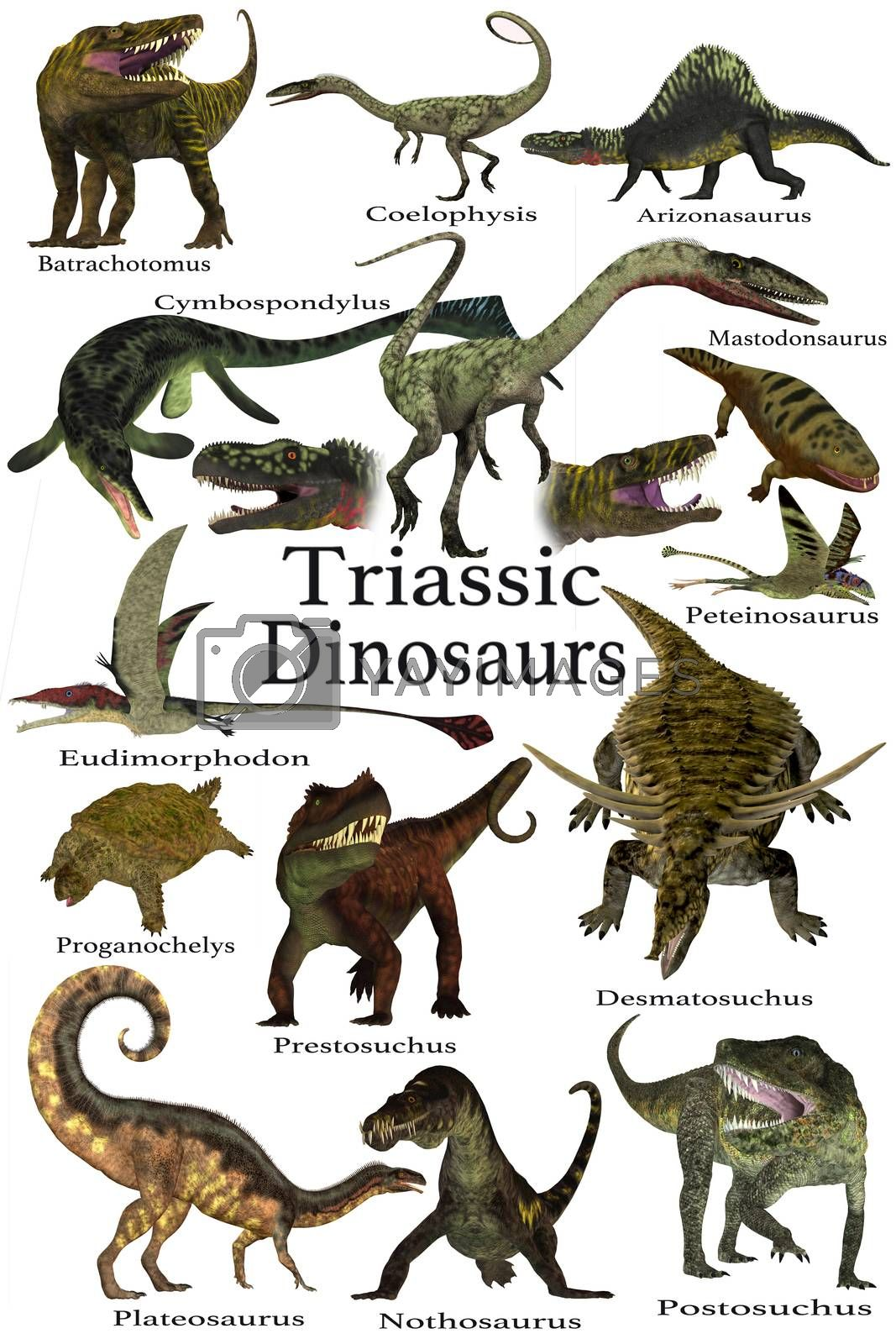 A collection of various dinosaur and marine animals that lived during the Triassic Period of Earth's history.
