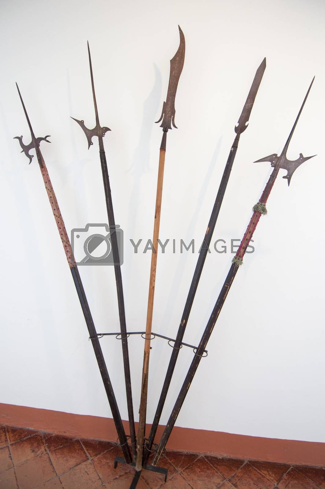 Ancient halberds in the corridor of a museum