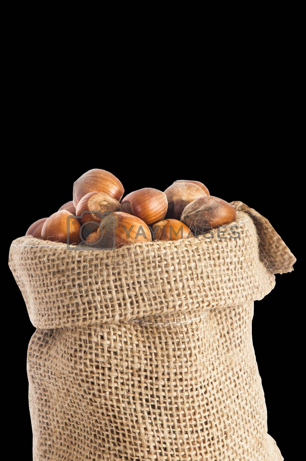 some hazelnuts placed over a black  background