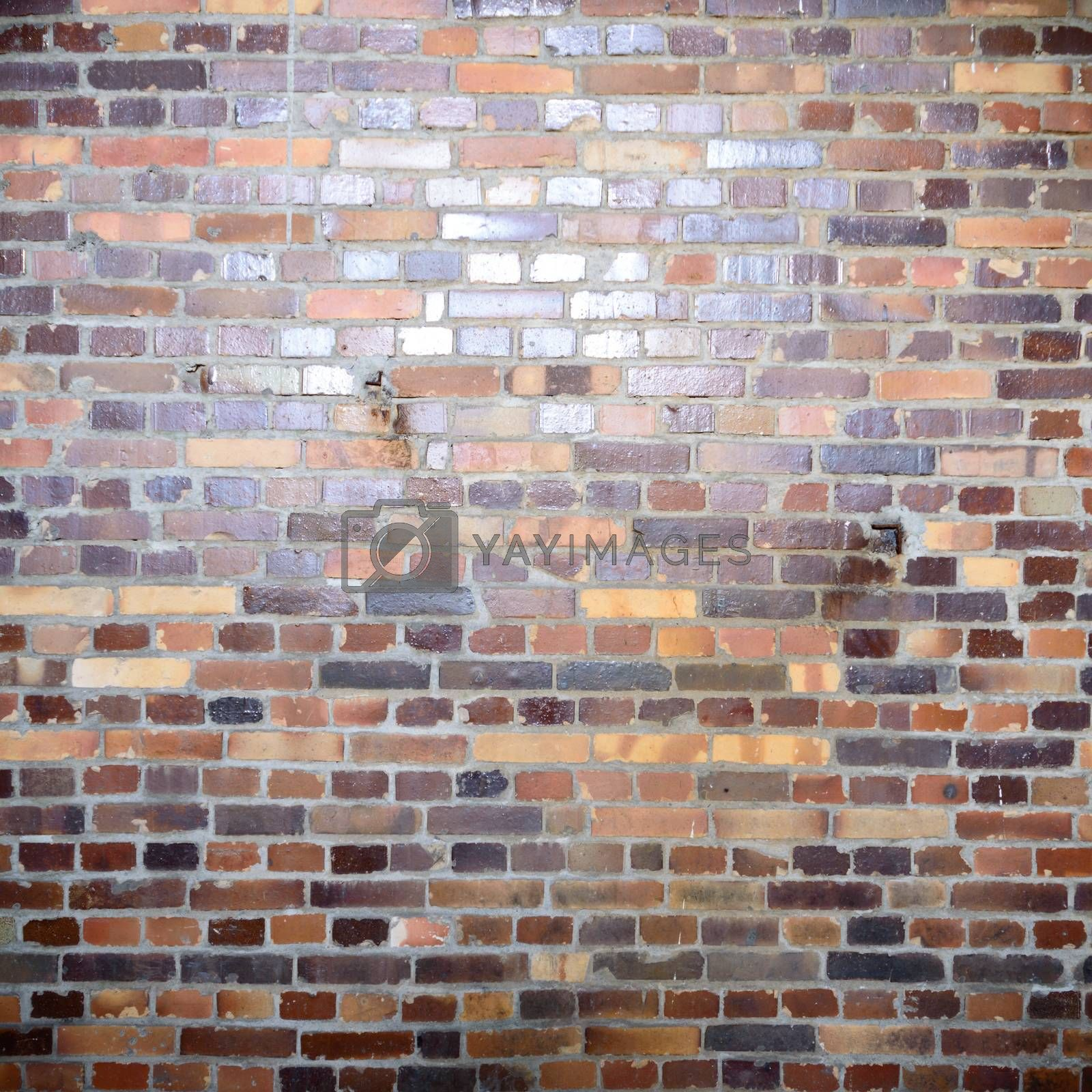 wall by TSpider
