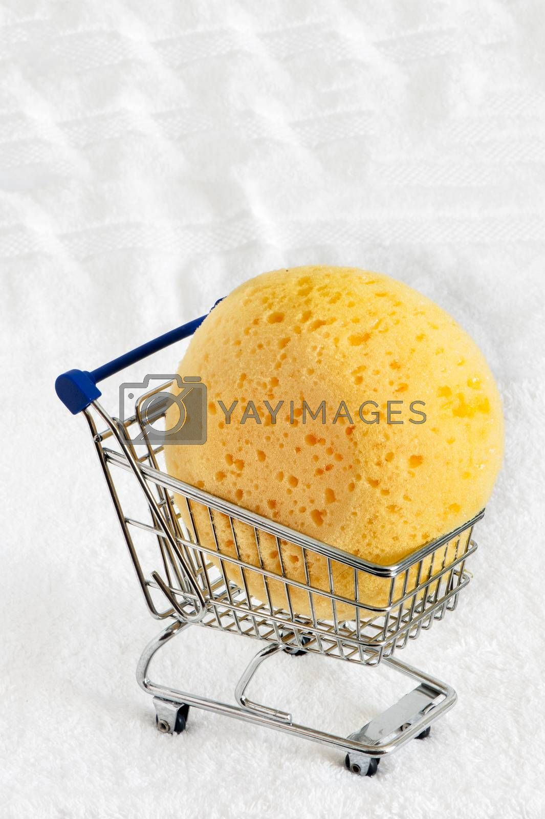 a yellow  sponge  on a  white background