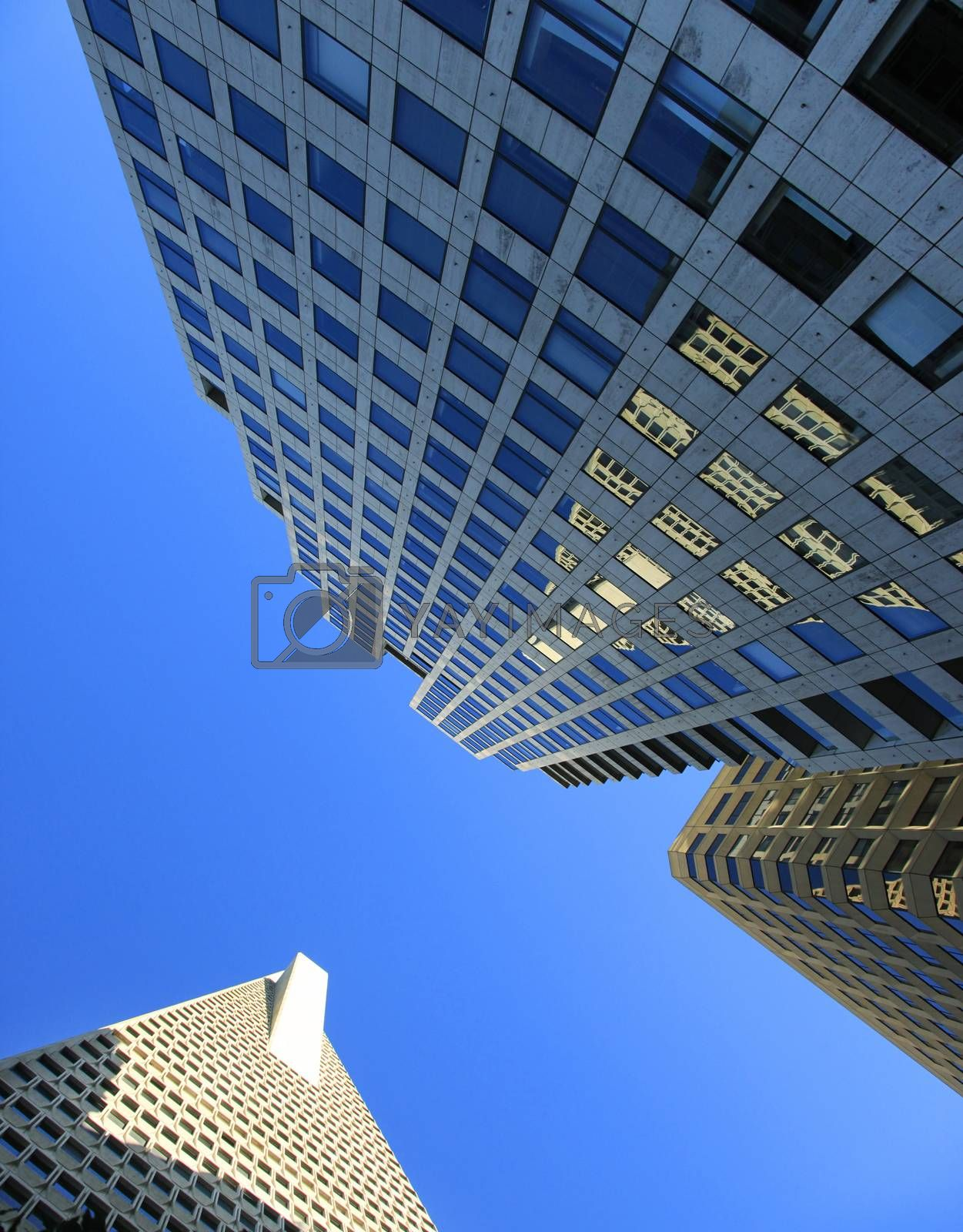 California Street (right) and 388 Market Street Building (left) - skyscrapers located in the Financial District of San Francisco