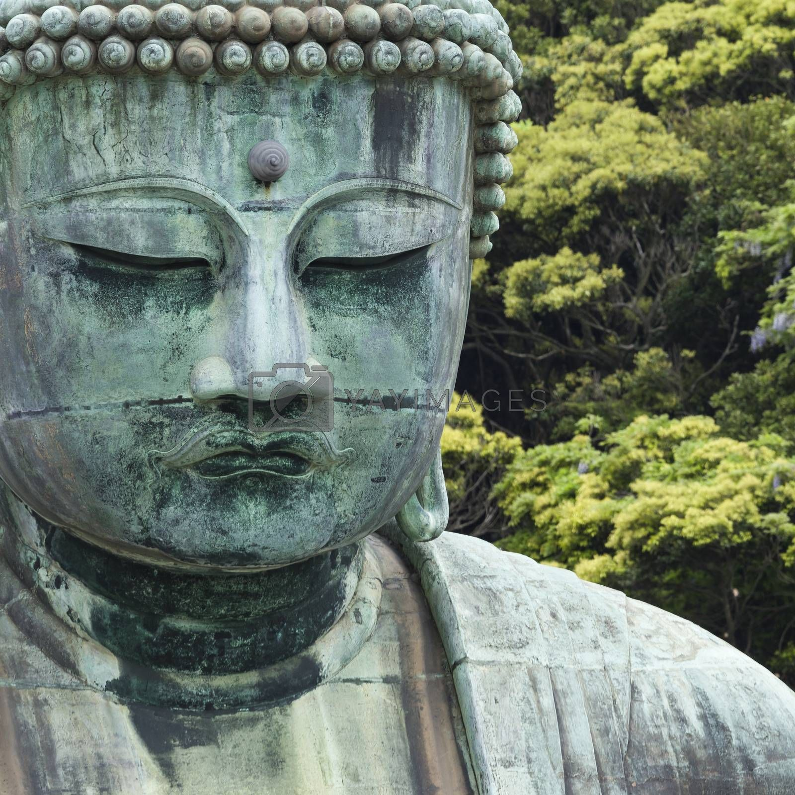 The Great Buddha (Daibutsu) on the grounds of Kotokuin Temple in Kamakura, Japan.