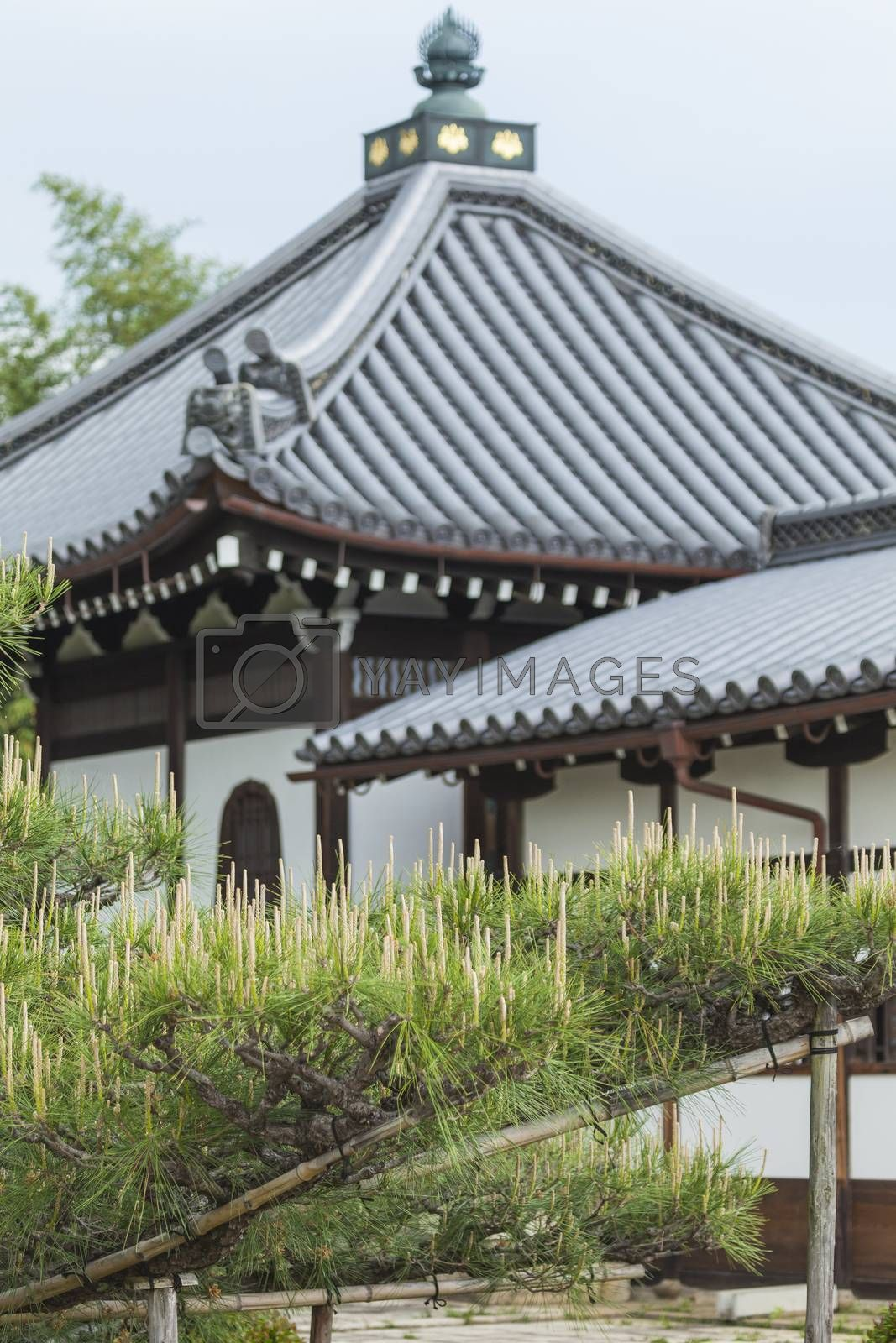 To-ji (East Temple) is a Buddhist temple of the Shingon sect in Kyoto, Japan.