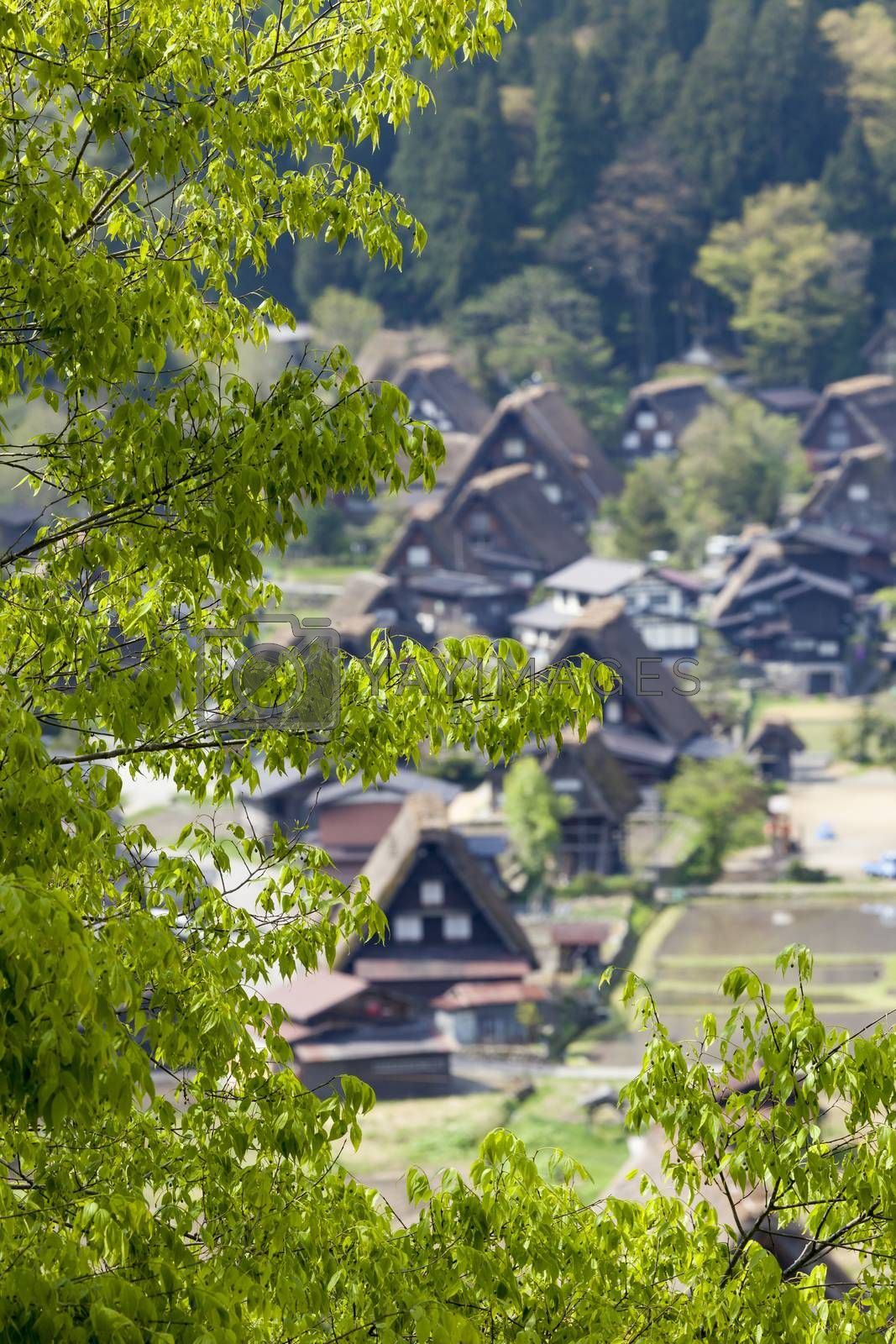 Traditional and Historical Japanese village Ogimachi - Shirakawa-go, Japan