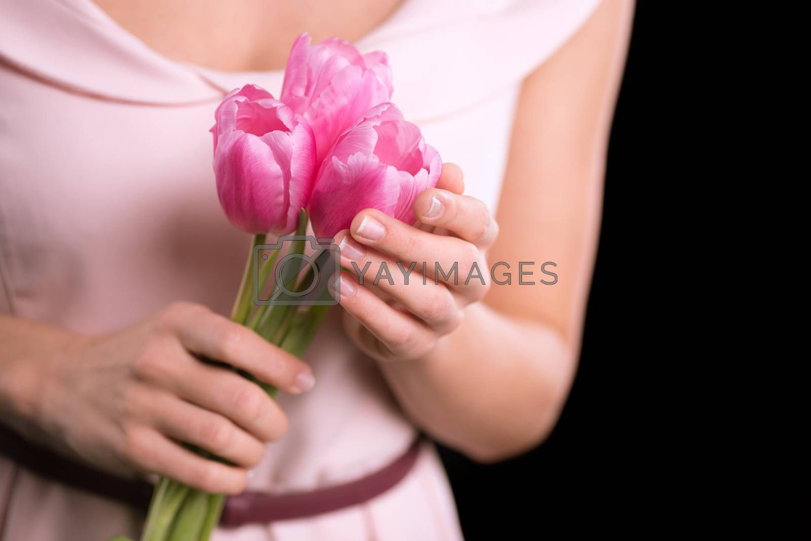 Close-up partial view of woman holding beautiful pink tulips on black, international womens day concept