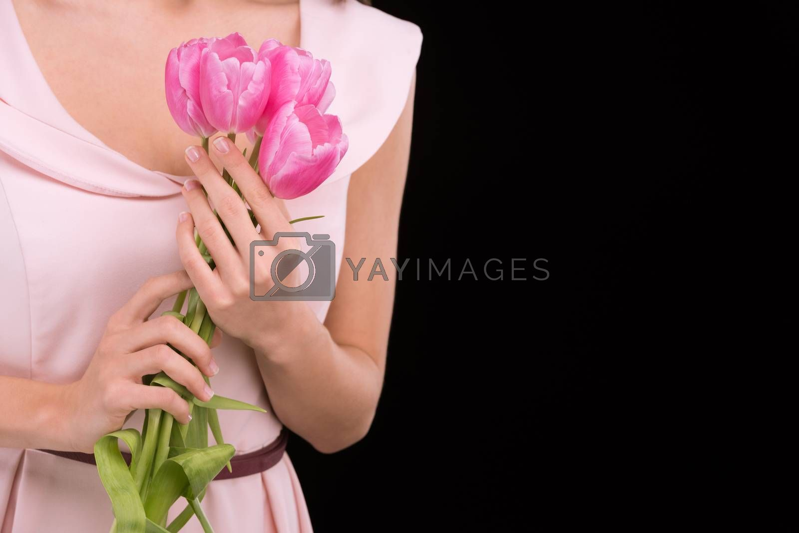 Close-up partial view of woman in dress holding pink tulips on black, international womens day concept