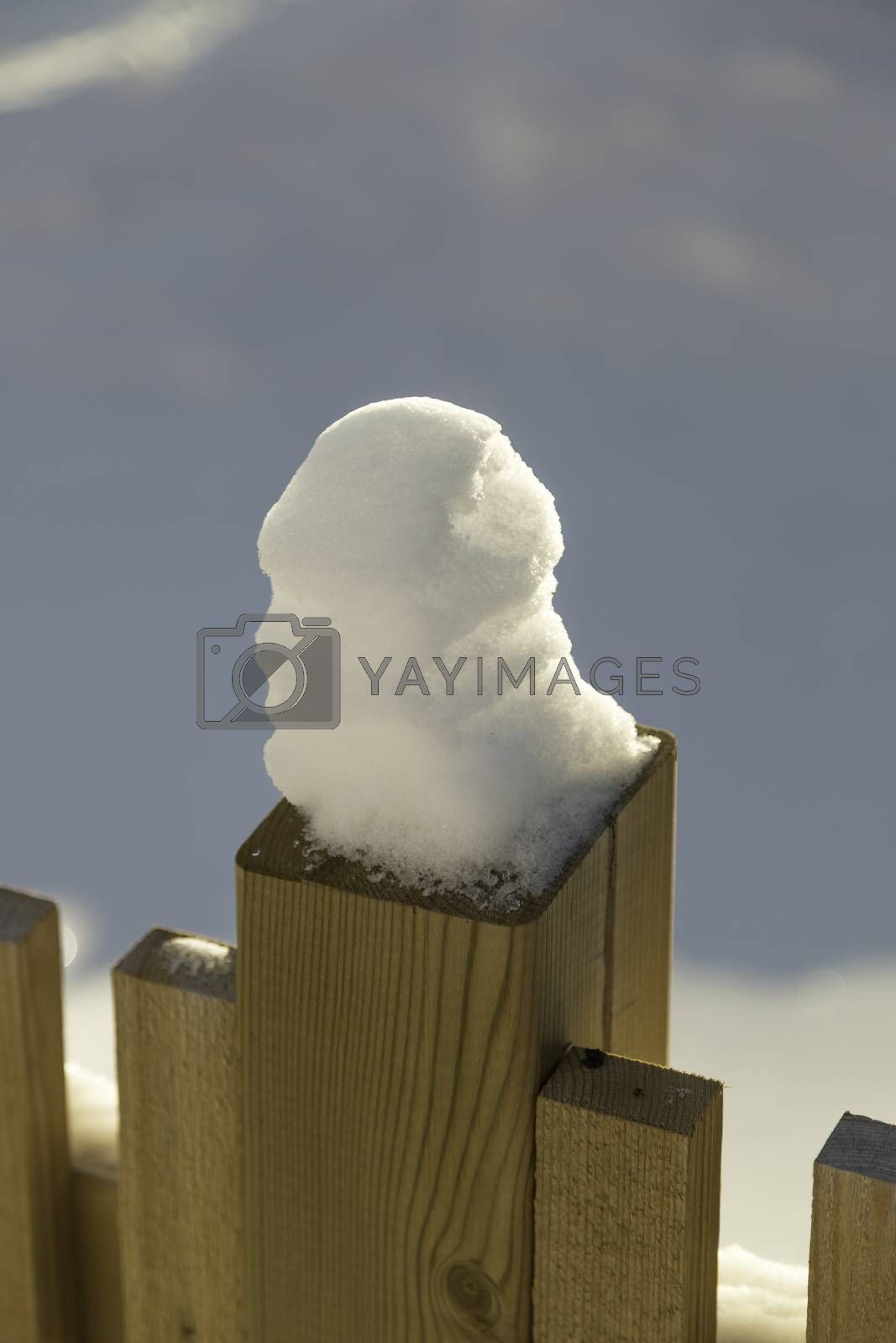 Snow on Fence with white background.