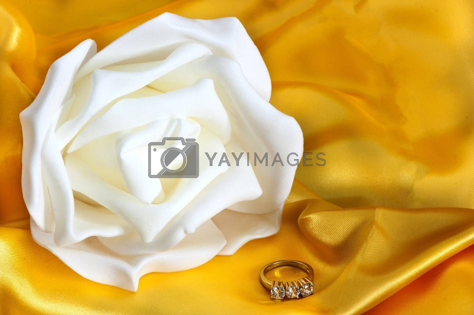 wedding rings on  a yellow fabric background