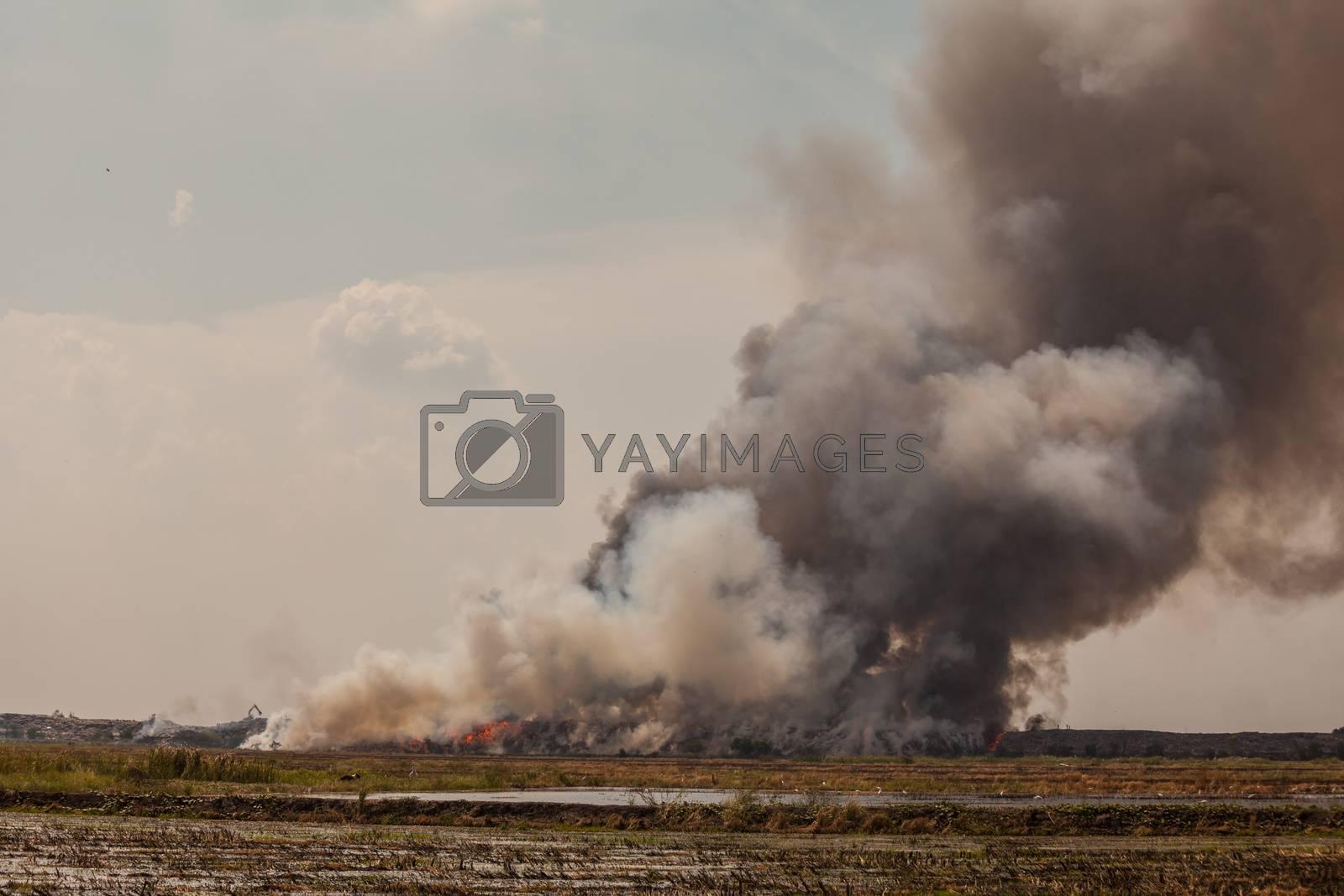 Burning garbage heap of smoke from a burning pile of garbage