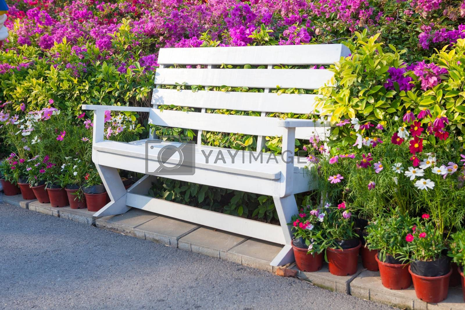 bench in the park with flower outdoor