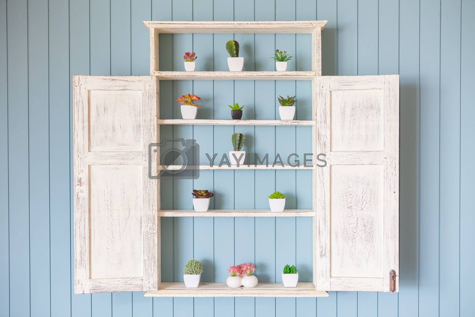 Window Flower box with beautiful flowers on blue wood background