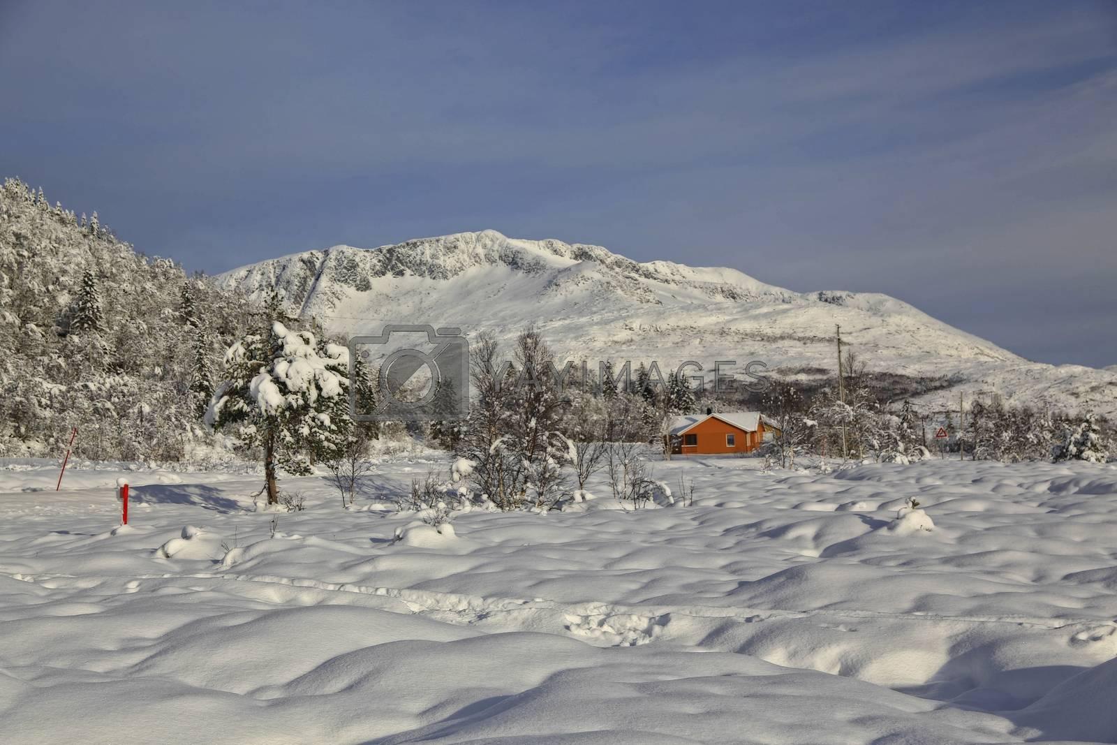 Fra Skisentret på Gåsheia i Brønnøy
