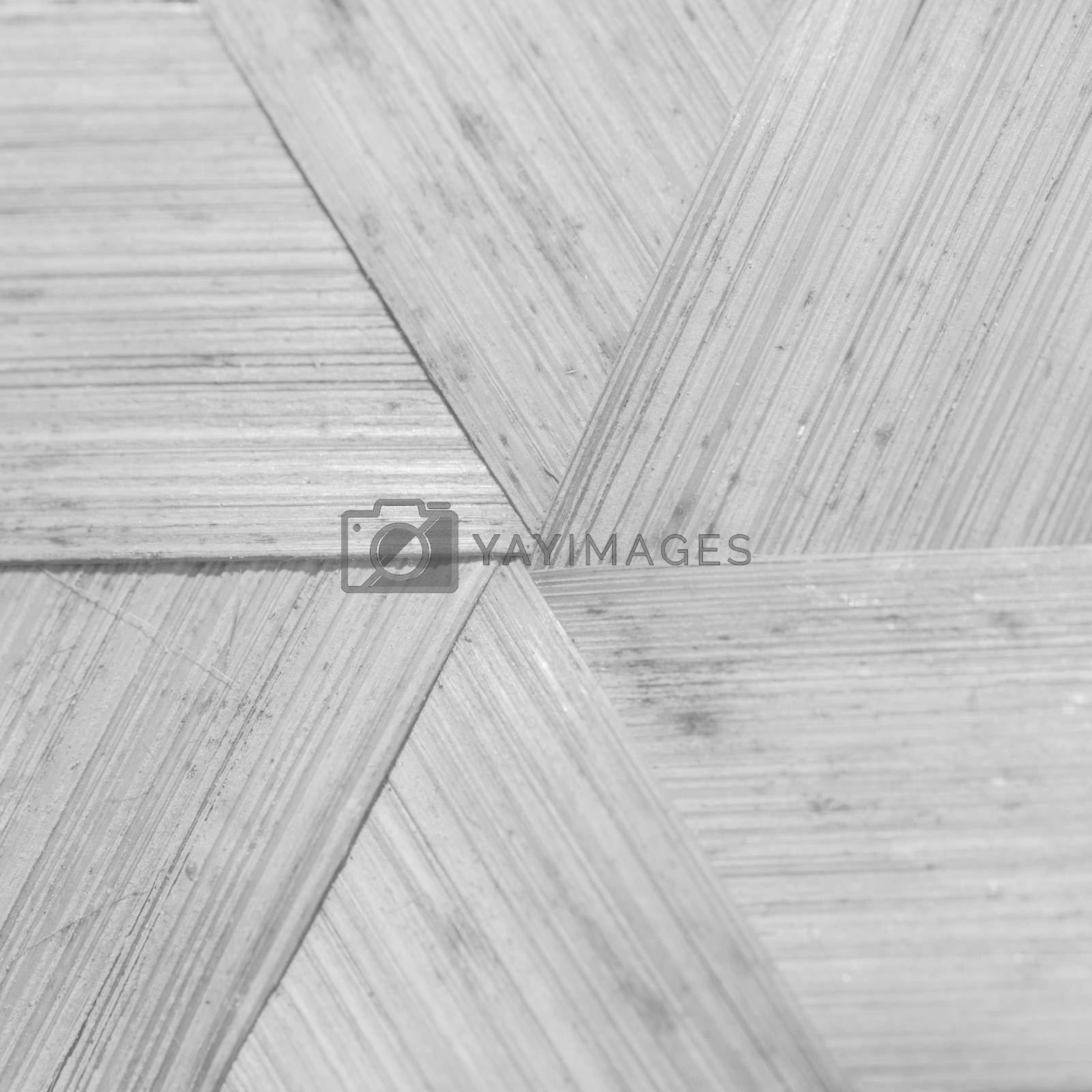 Whte background of bamboo texture
