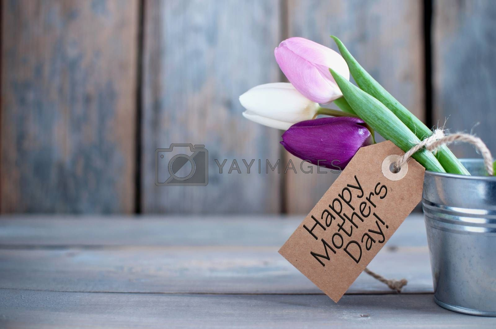 Mothers day tulips in a pot wooden background with space with gift label