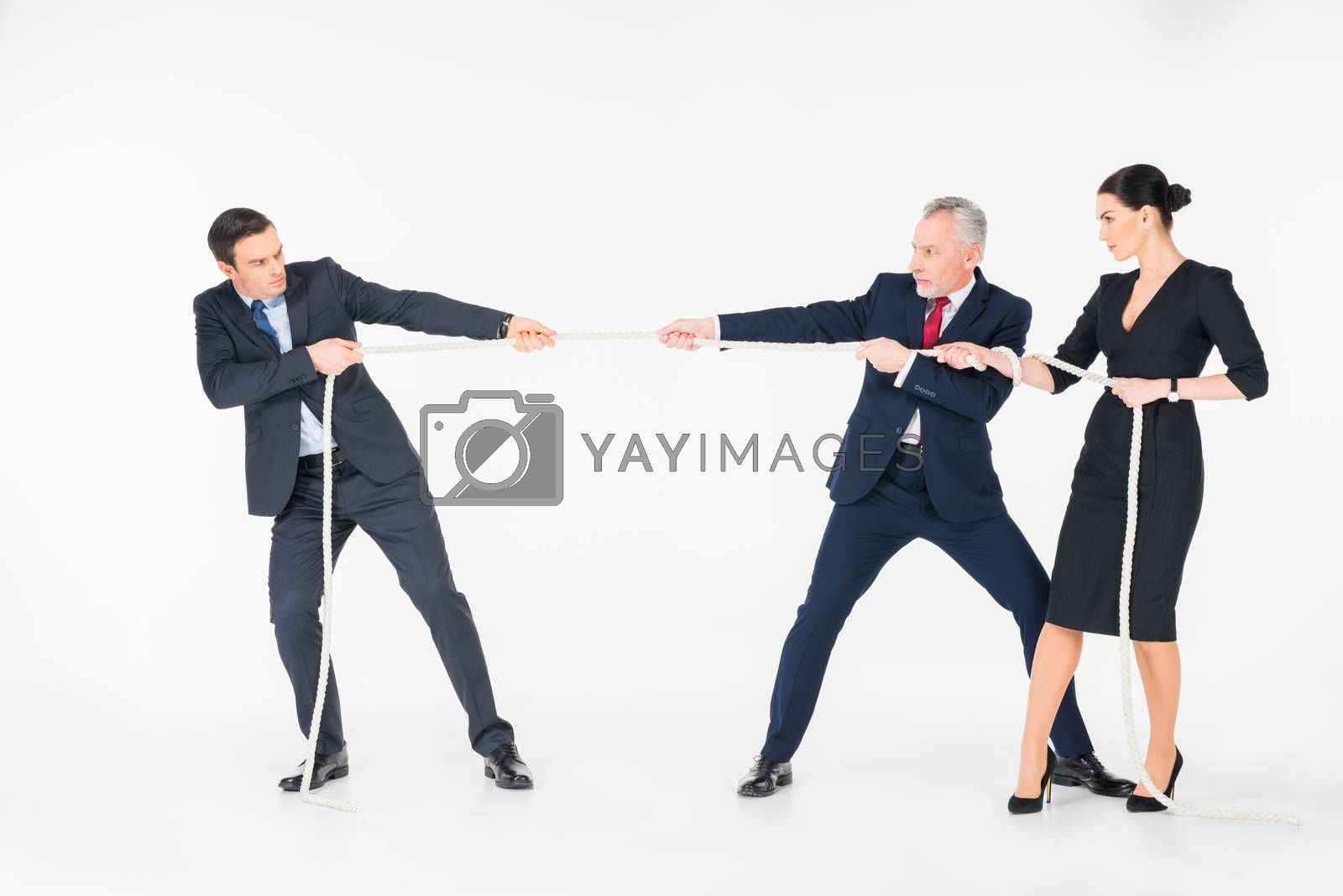 Three concentrated businesspeople pulling rope on white