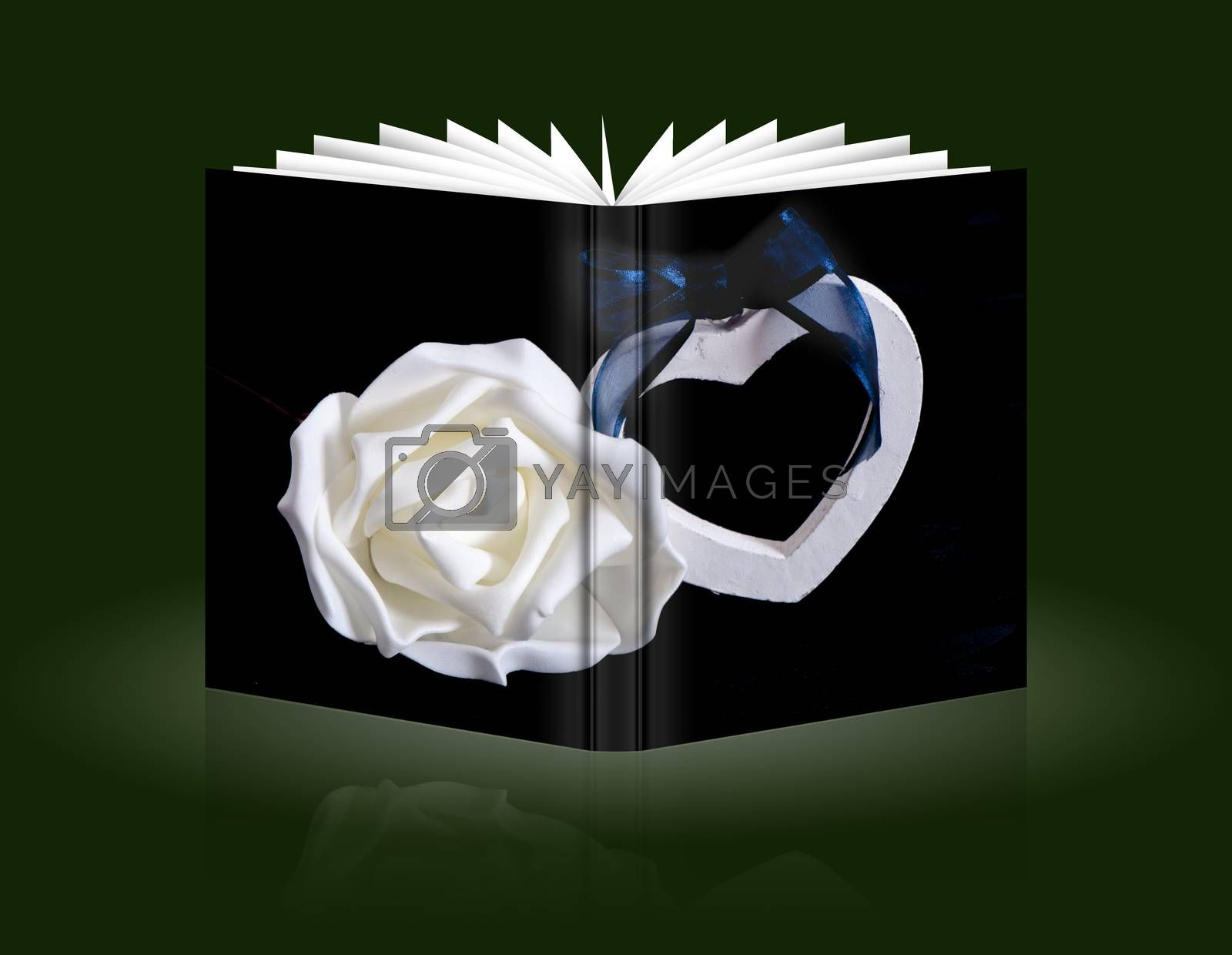 book a gift for wedding,Valentine's, mother and women day