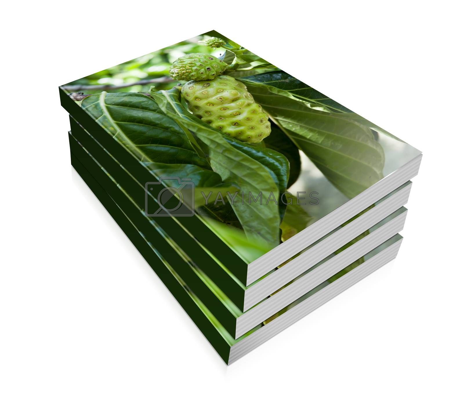 a books for noni fruit on the tree