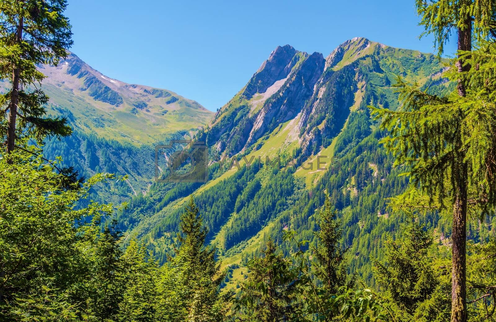 Switzerland Mountain Landscape in a Summer. Scenic Switzerland Alps.