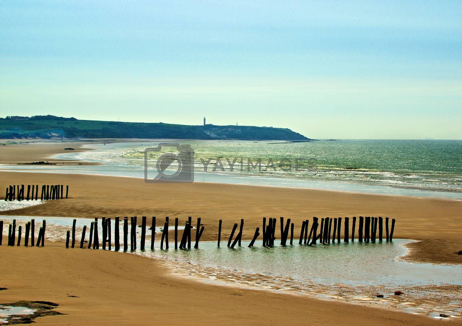 Landscape of French Atlantic Coast with Wooden Breakwaters Outdoors near Sangatte, France