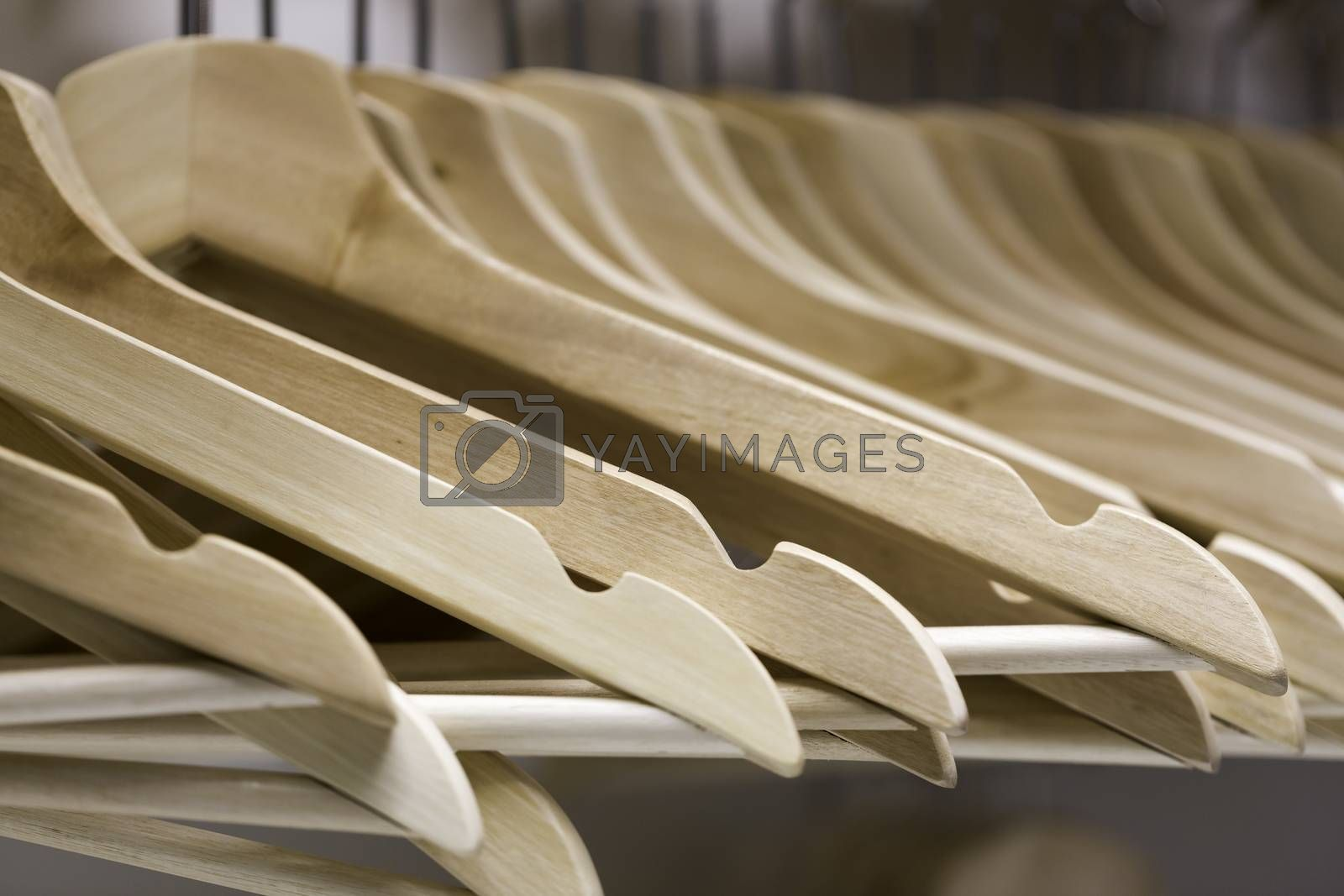 White Wooden Coat Hangers Close up.