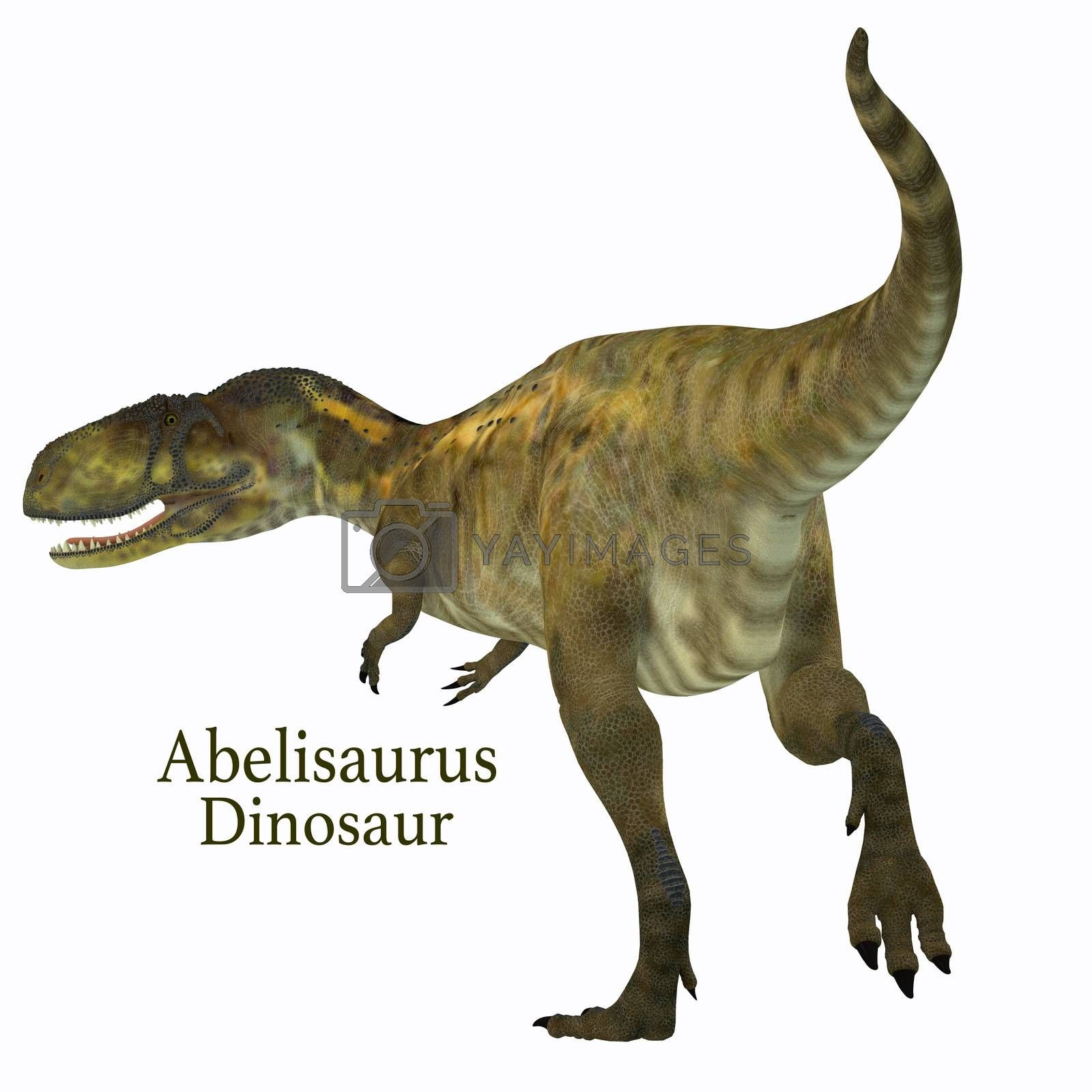 Abelisaurus was a carnivorous theropod dinosaur that lived in Argentina in the Cretaceous Period.