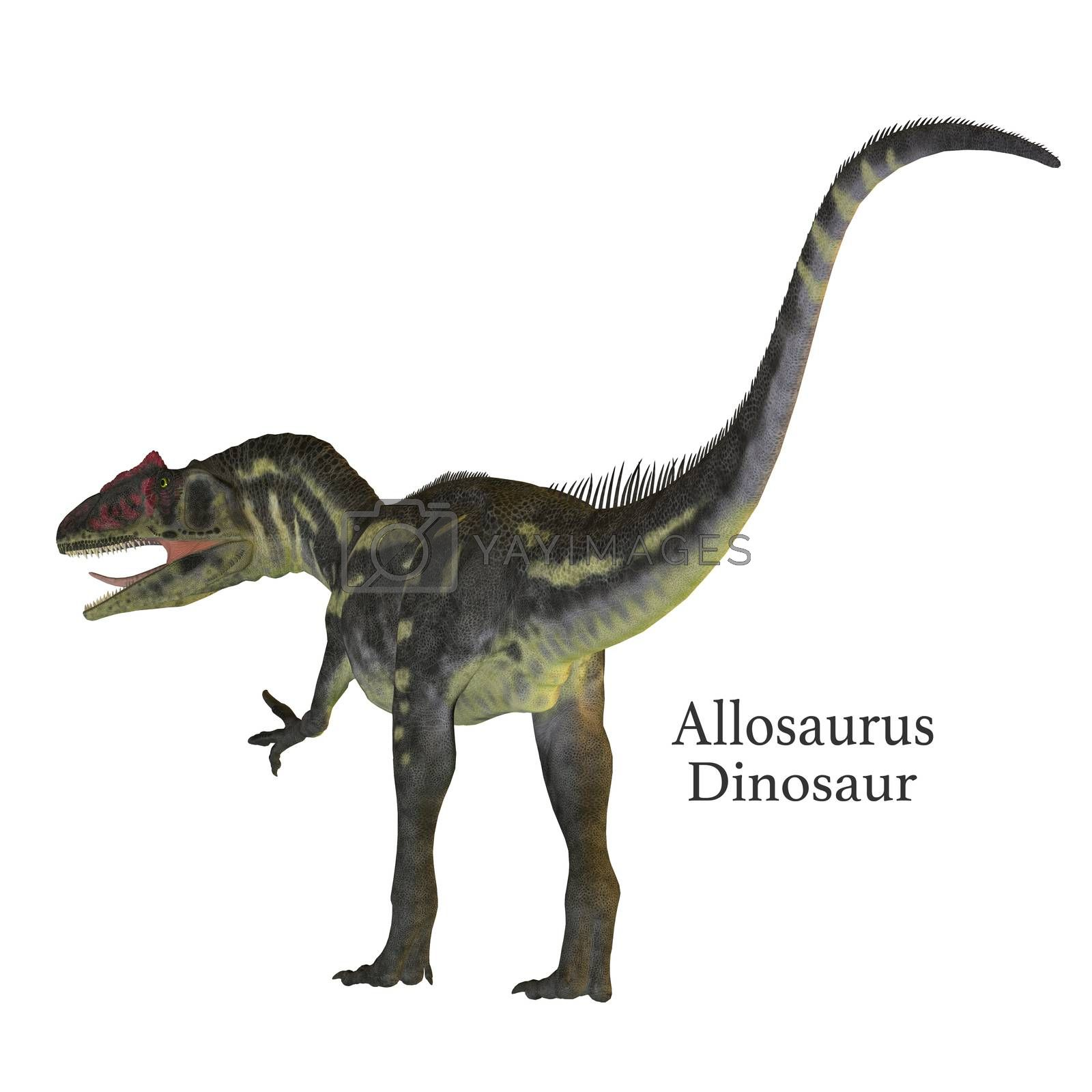 Allosaurus was a carnivorous theropod dinosaur that lived in North America in the Jurassic Period.