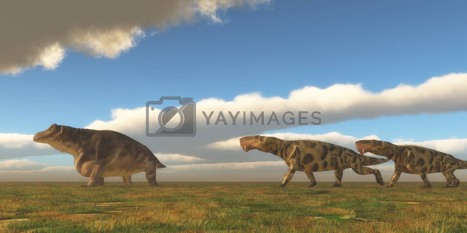 Two Inostrancevia dinosaurs go after a Keratocephalus on a grassy plain in the Permian Period.
