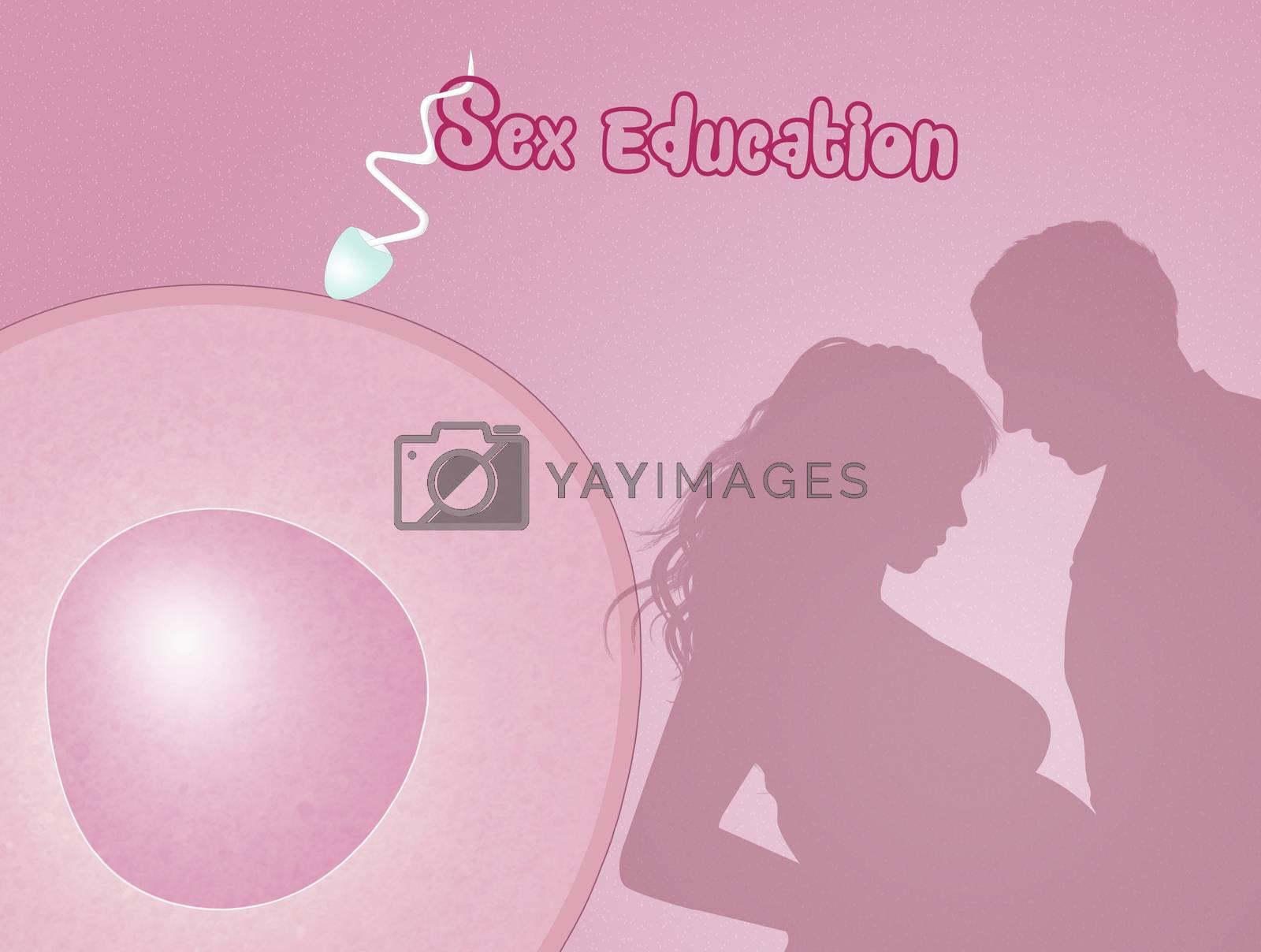 illustration of sex education