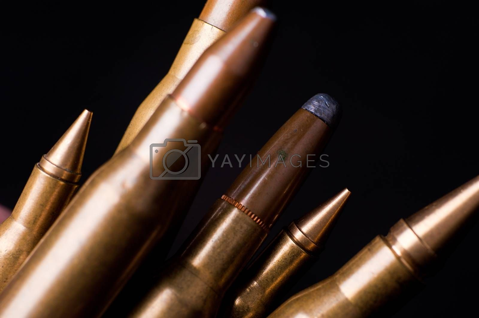 Golden Rifle Bullets on Black Background. Closeup-Macro Photography