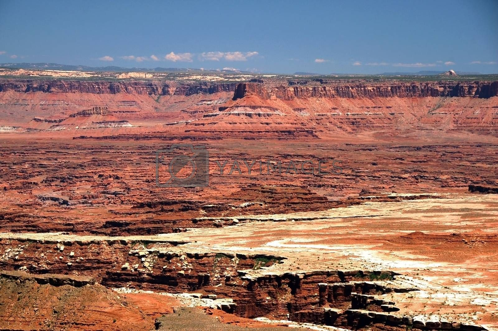 Canyonlands Landscape. Canyonland National Park in the Utah State. USA. Panoramic Photo.