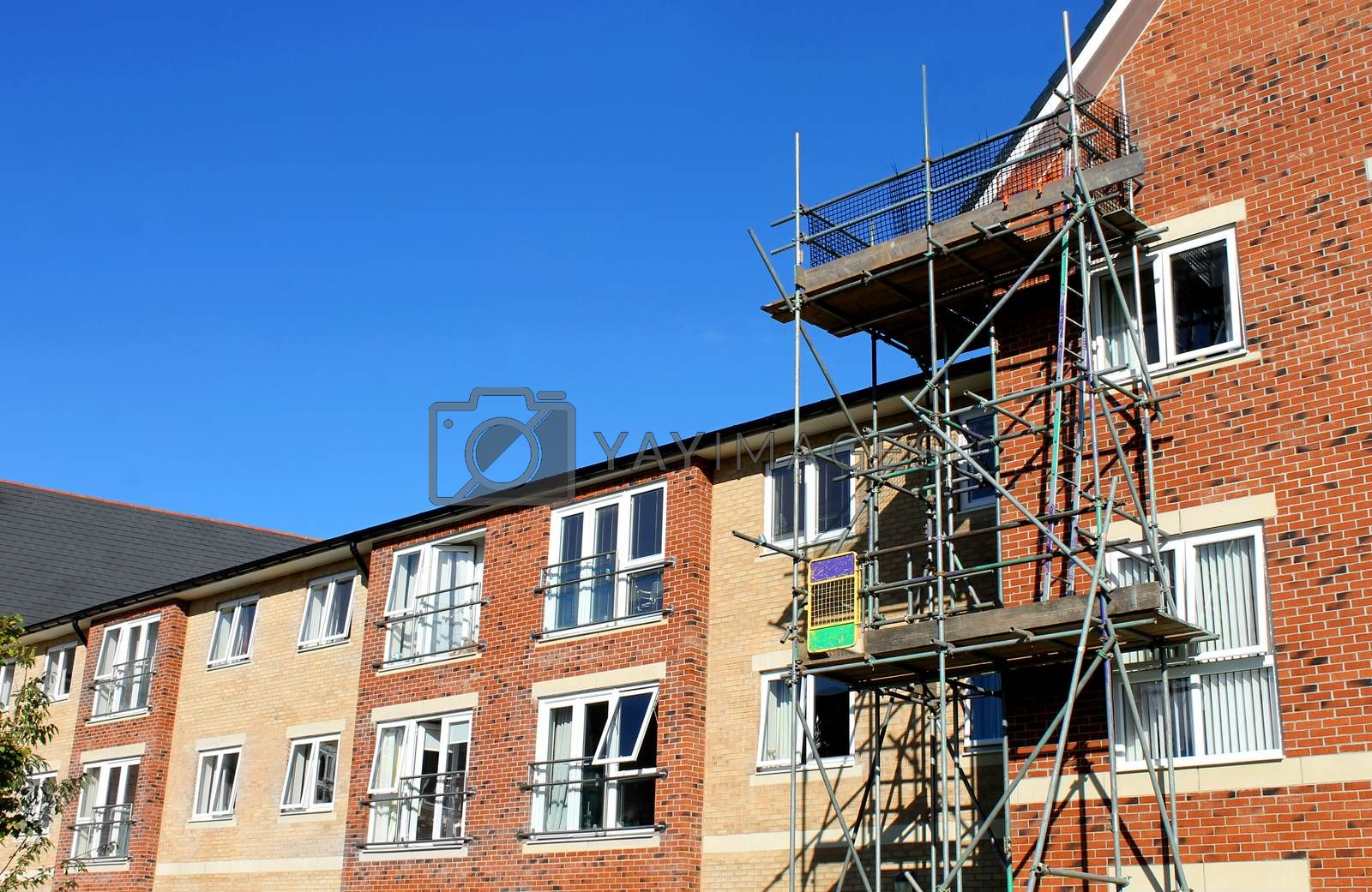 Royalty free image of Scaffolding on modern commercial building by speedfighter