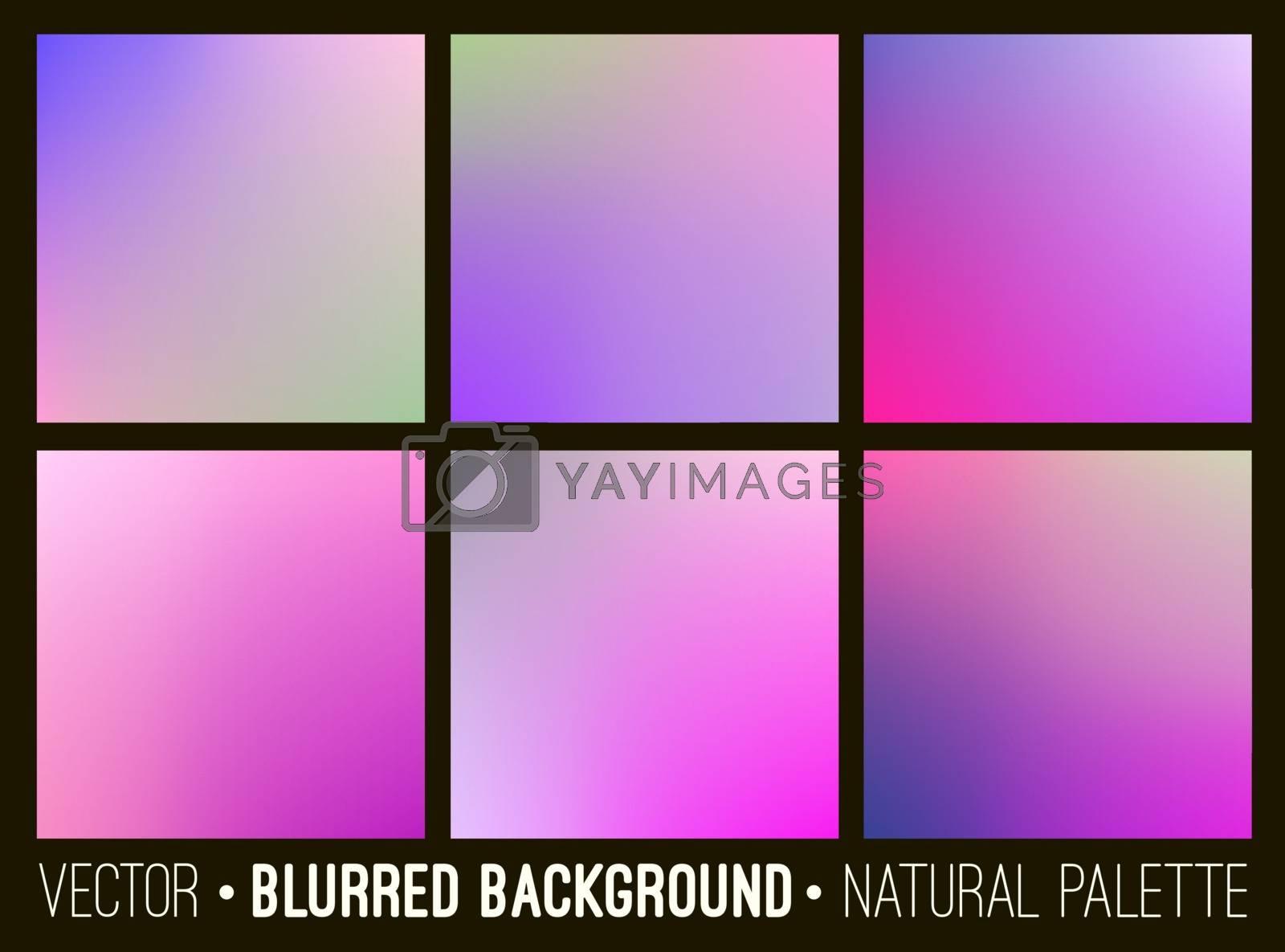 Color abstract blurred background set. Pink lilac violet palette. Smooth design elements collection flower concept