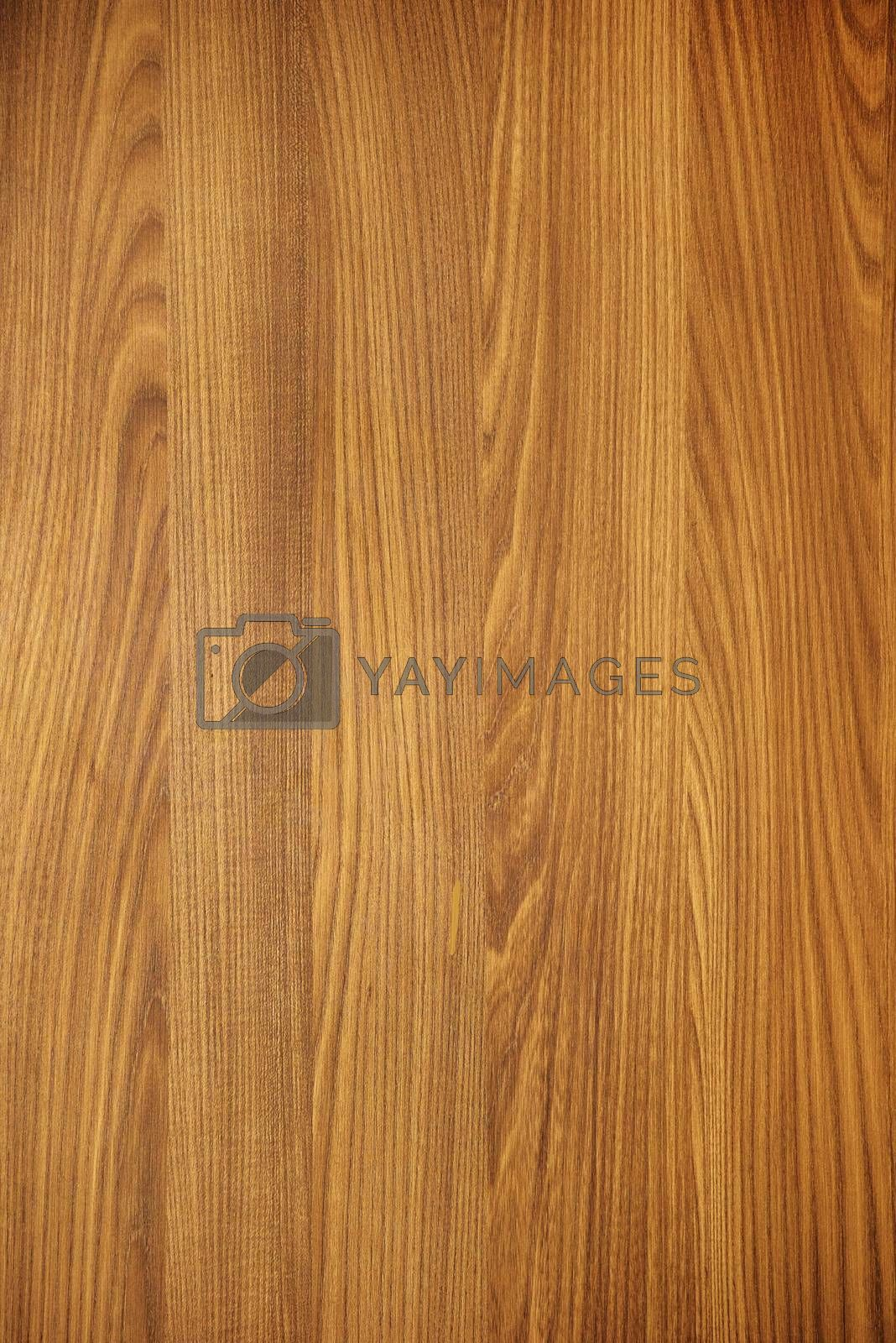 Brown wood texture background blank for design
