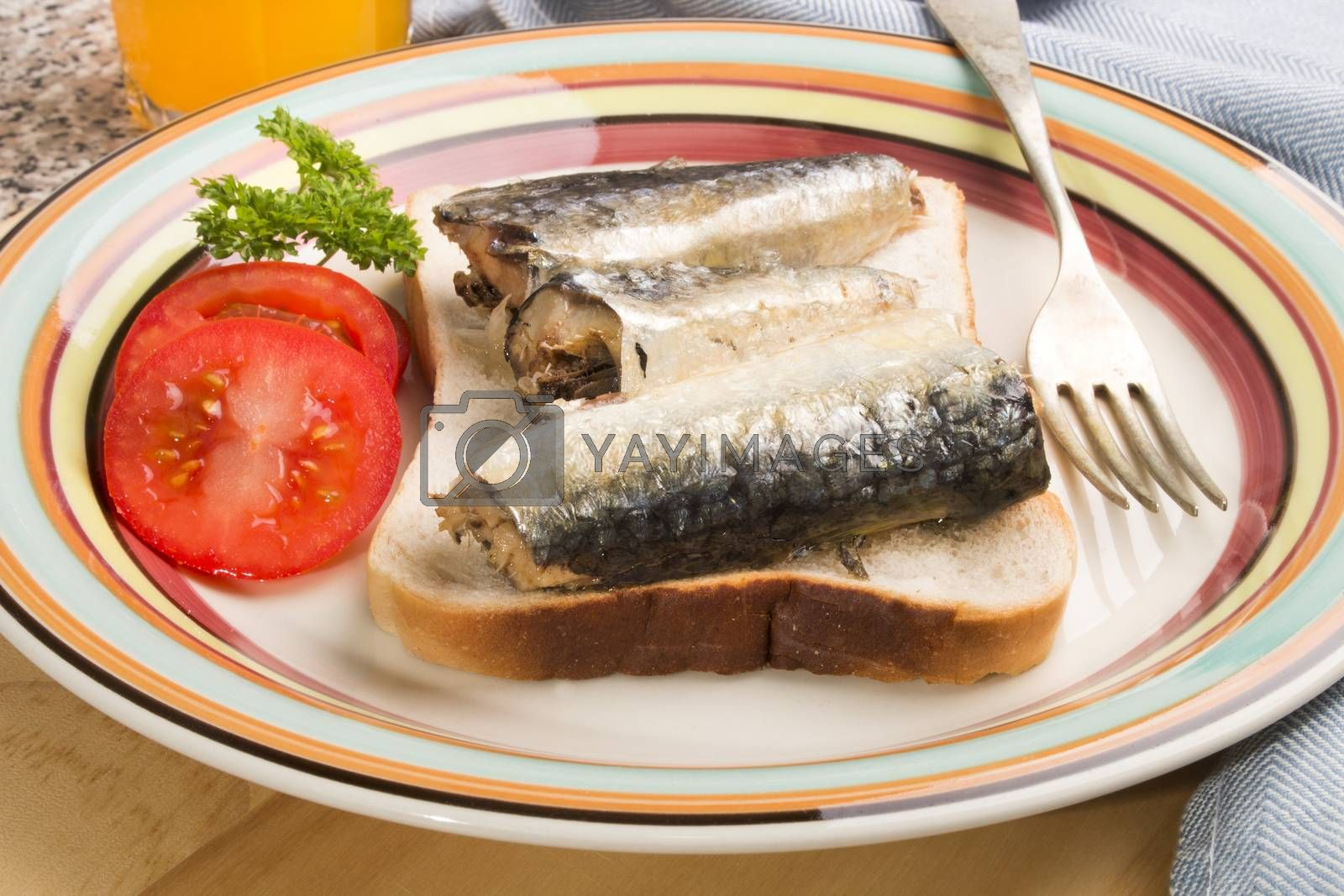 sardines in oil on a slice of fresh toast bread