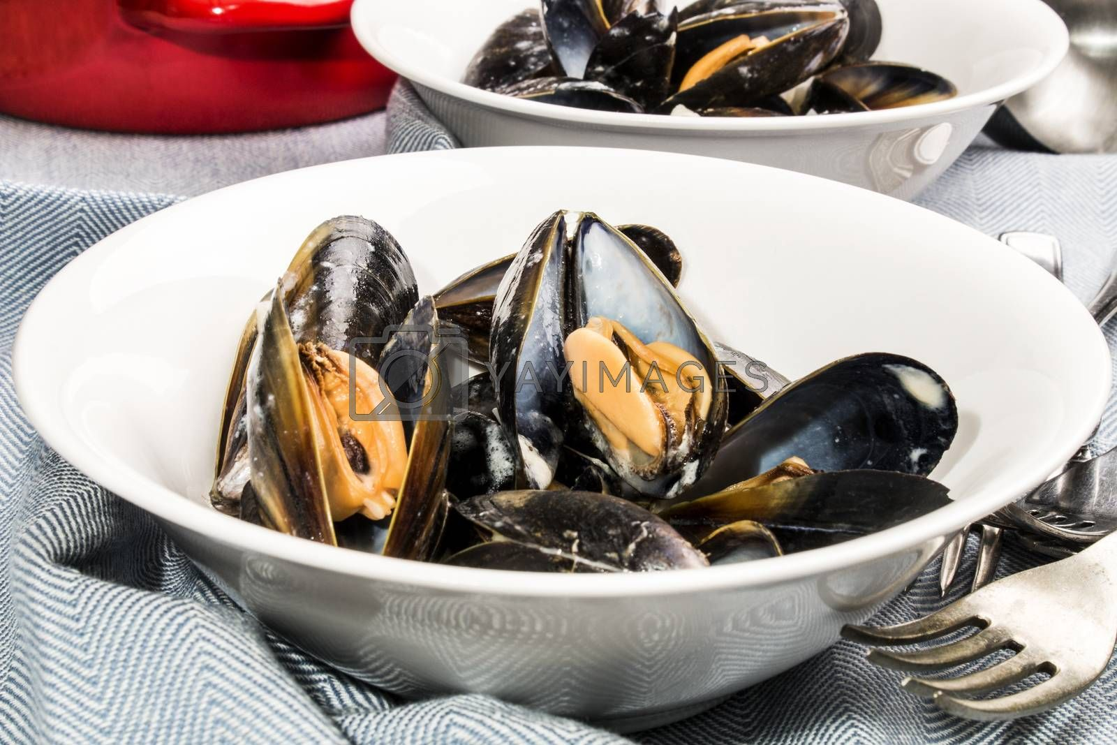 mussels and white wine sauce on a deep plate