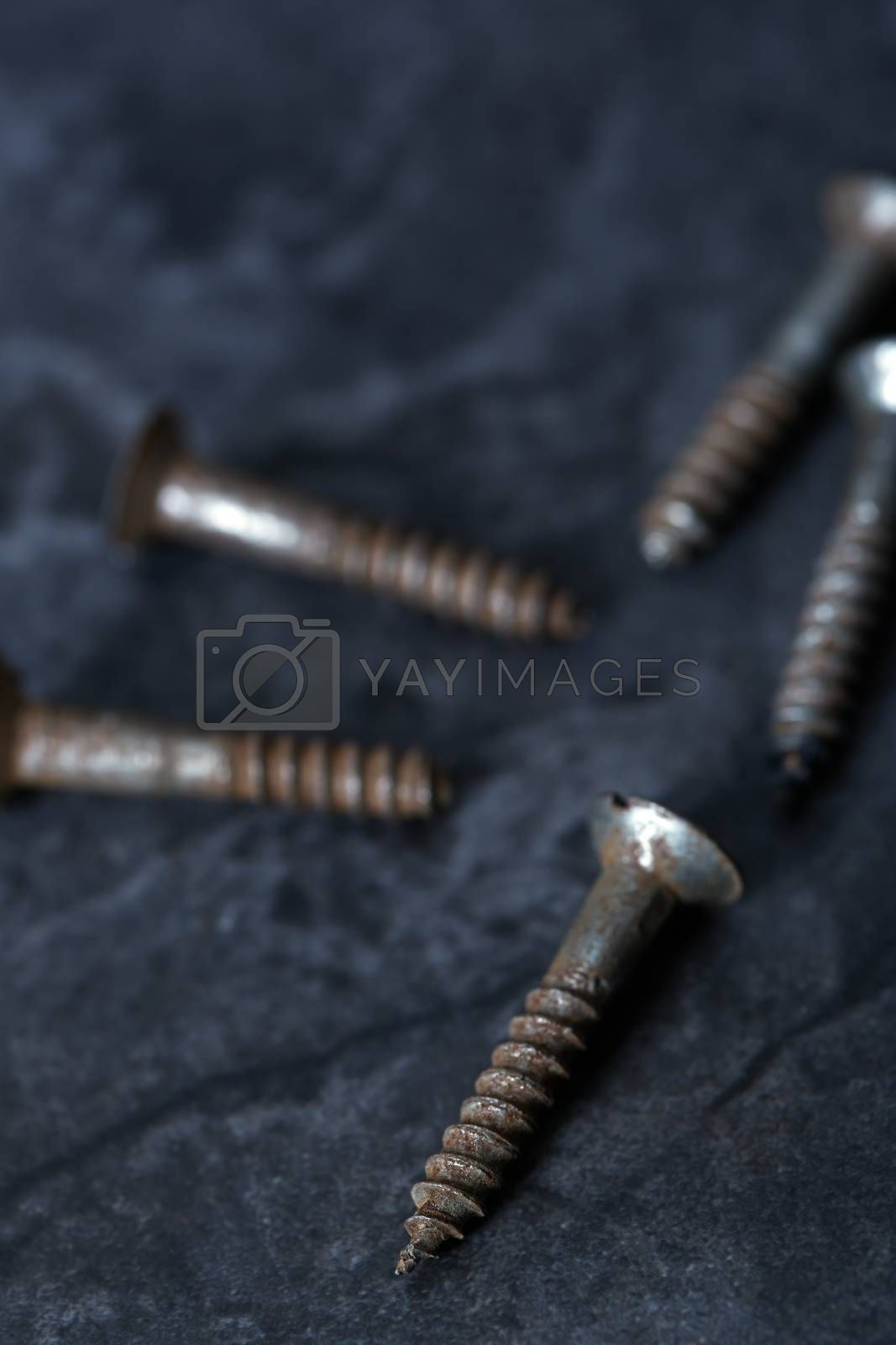Group of rusty screws. Close-up vertical photo