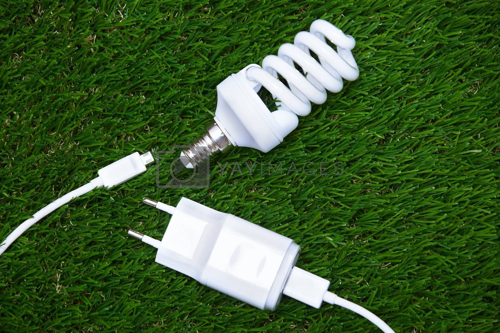 Energy saving bulb and electric plug in the grass