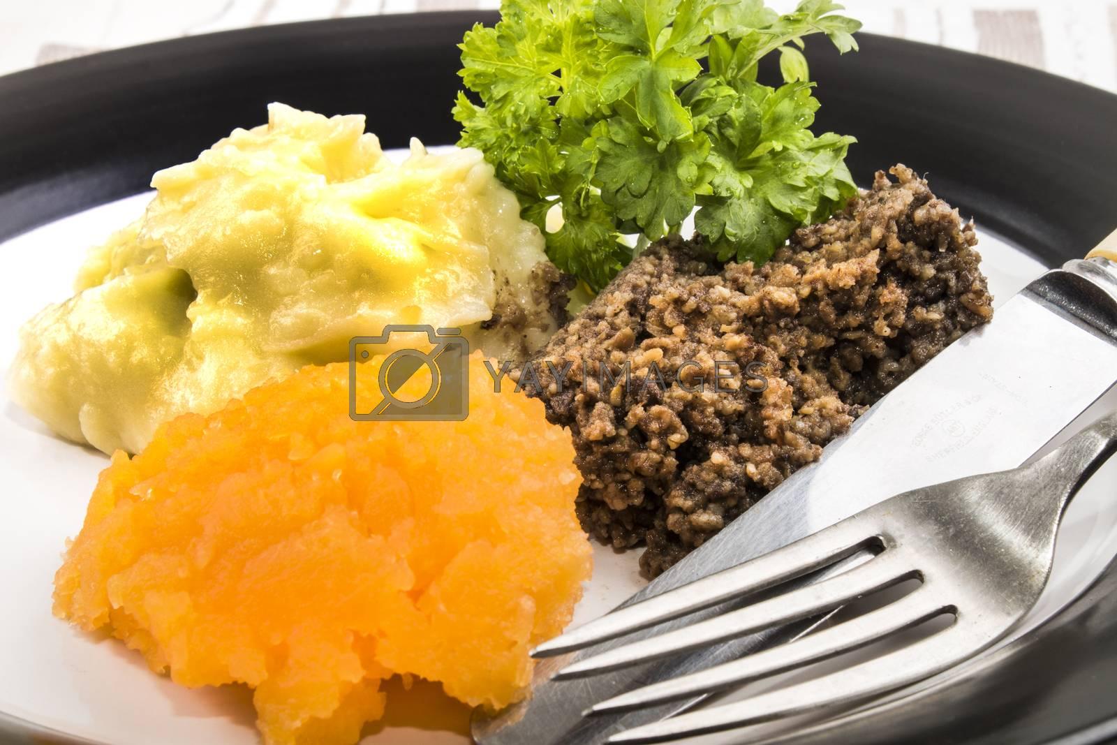 traditional scottish dish, haggis with mashed potatoes and mashed potatoes