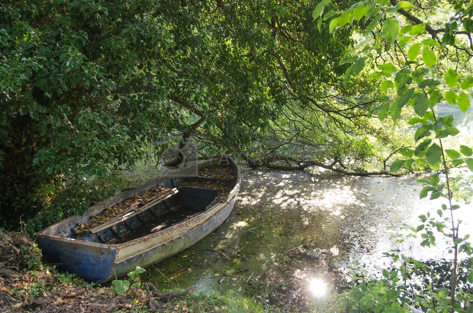 Old forgotten boat covered with leafs in water