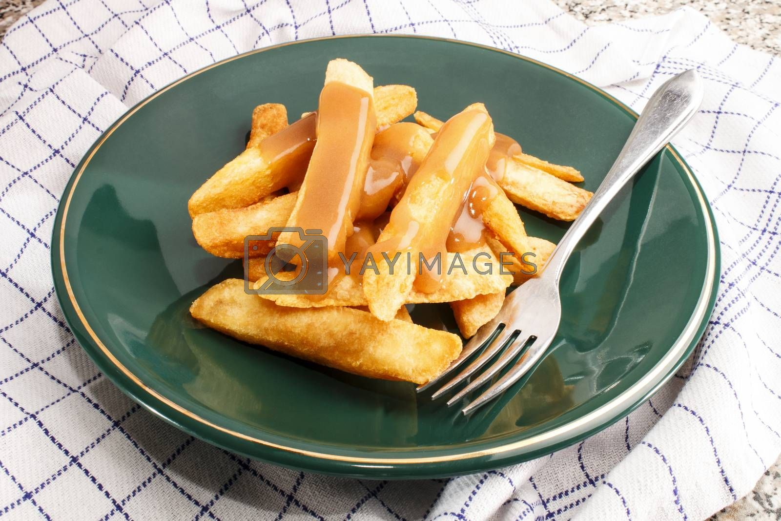 irish potato chips with gravy on a green plate with fork