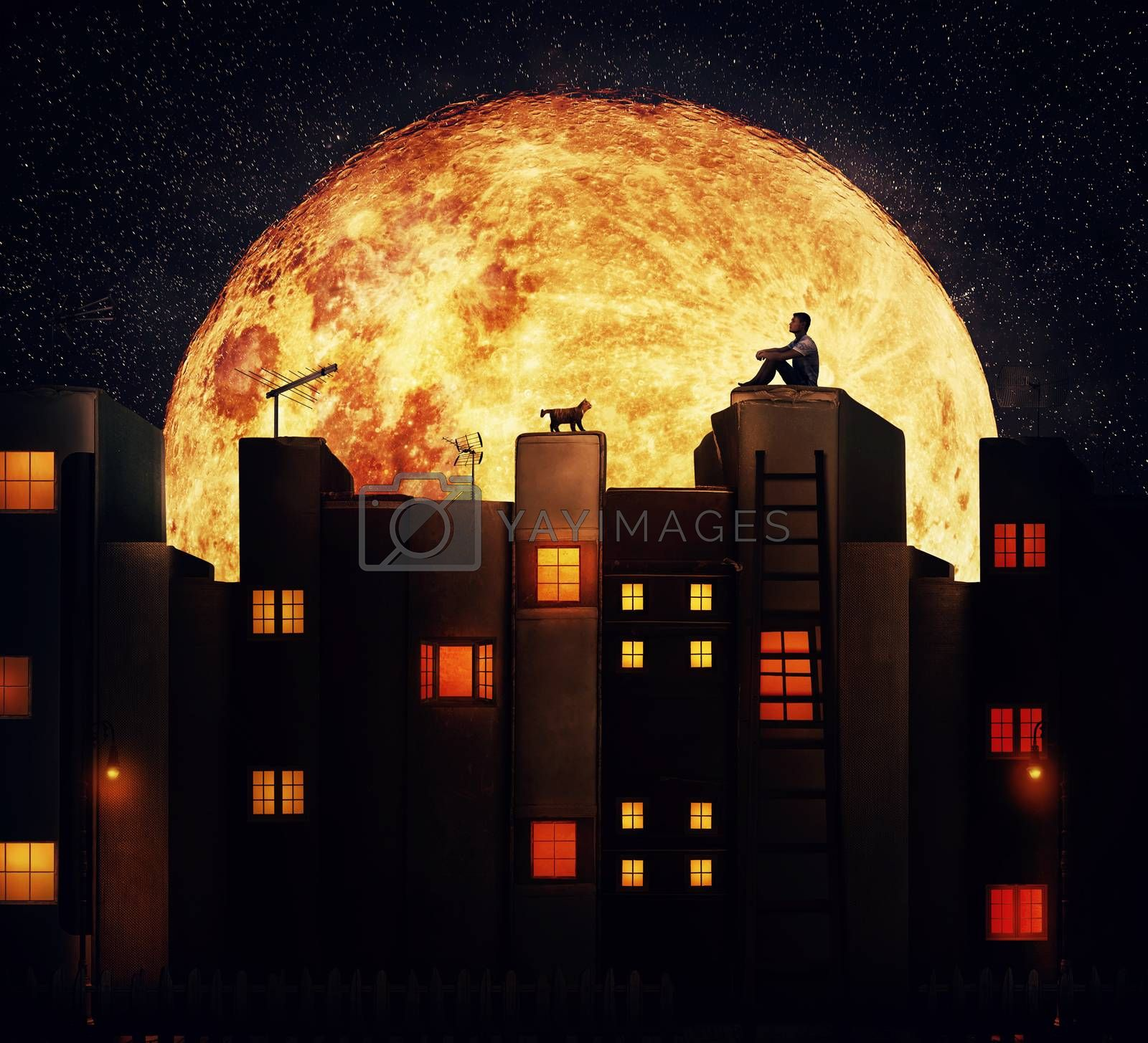 Boy with a cat sitting on the rooftop of a magic city with houses made of books. Tale night scene with a giant full moon in a fantasy town.
