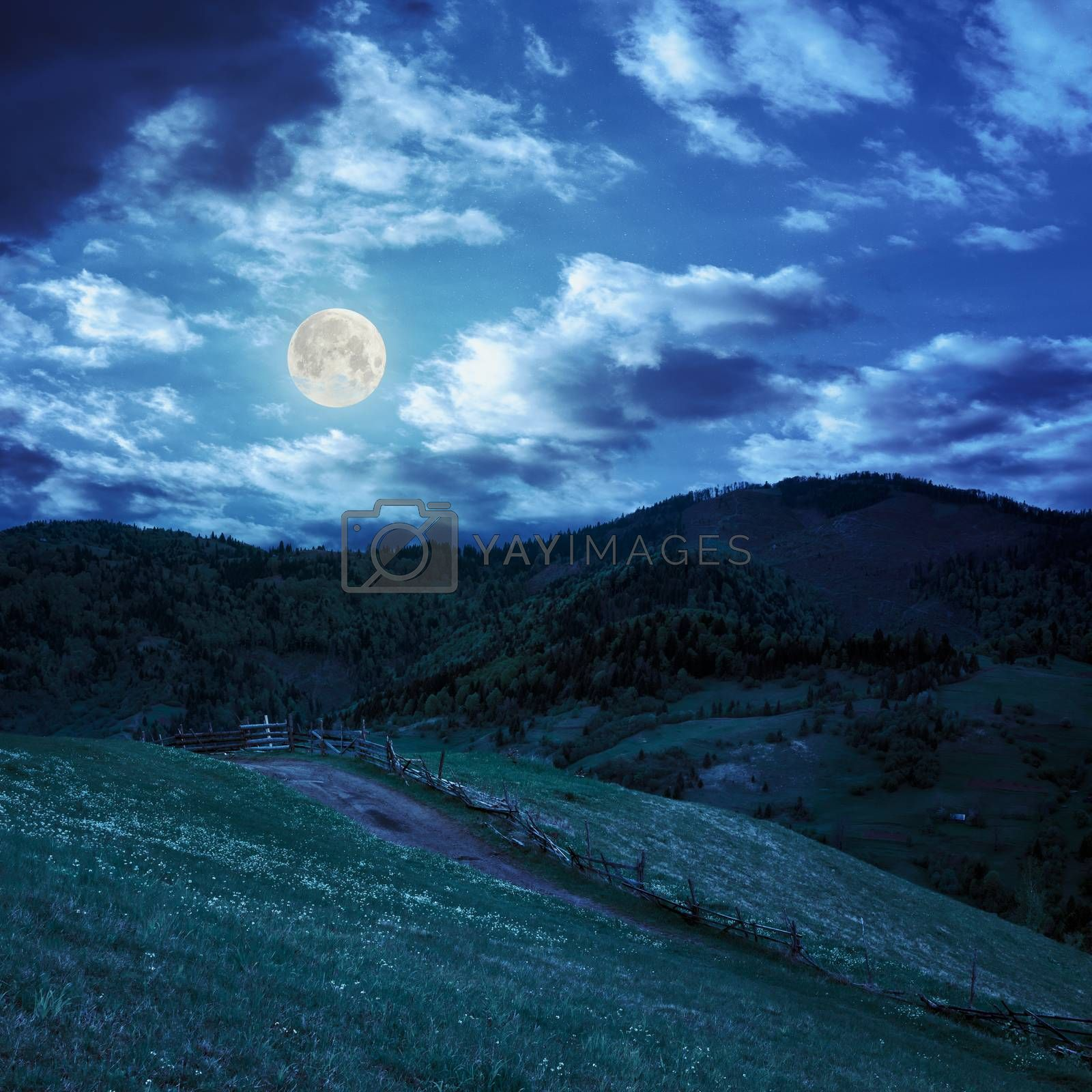 fence on hillside meadow in mountain at night by Pellinni