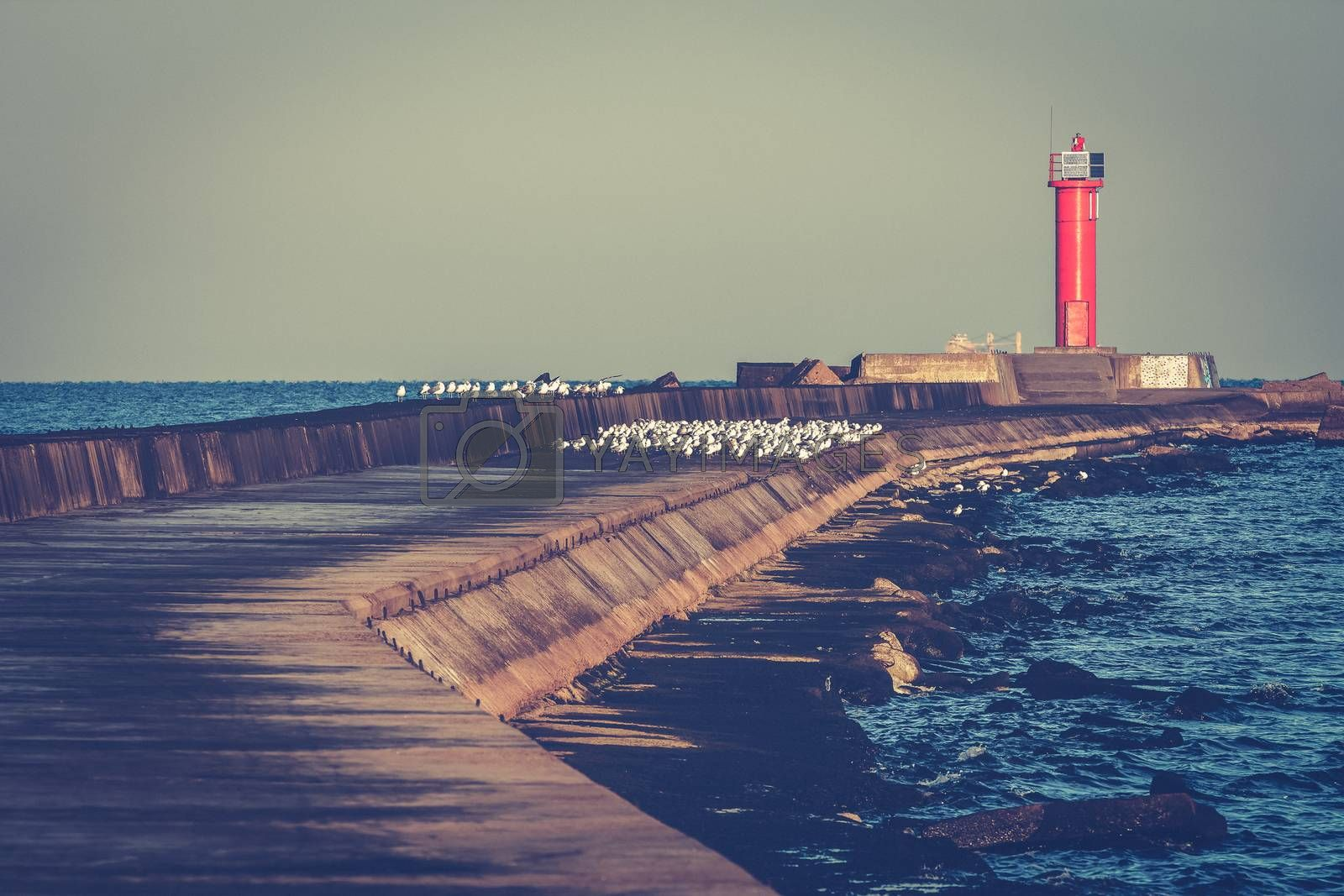 Breakwater dam with lighthouse by New SIGHT Photography