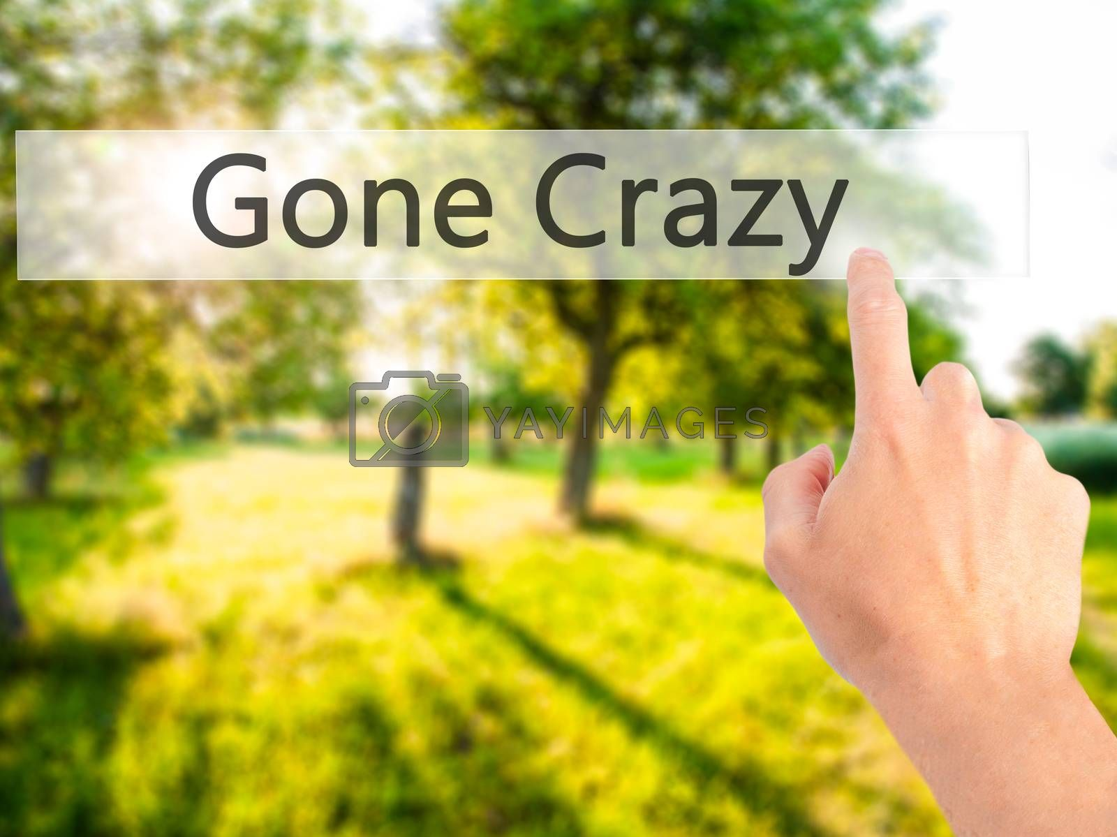 Gone Crazy - Hand pressing a button on blurred background concep by jackald