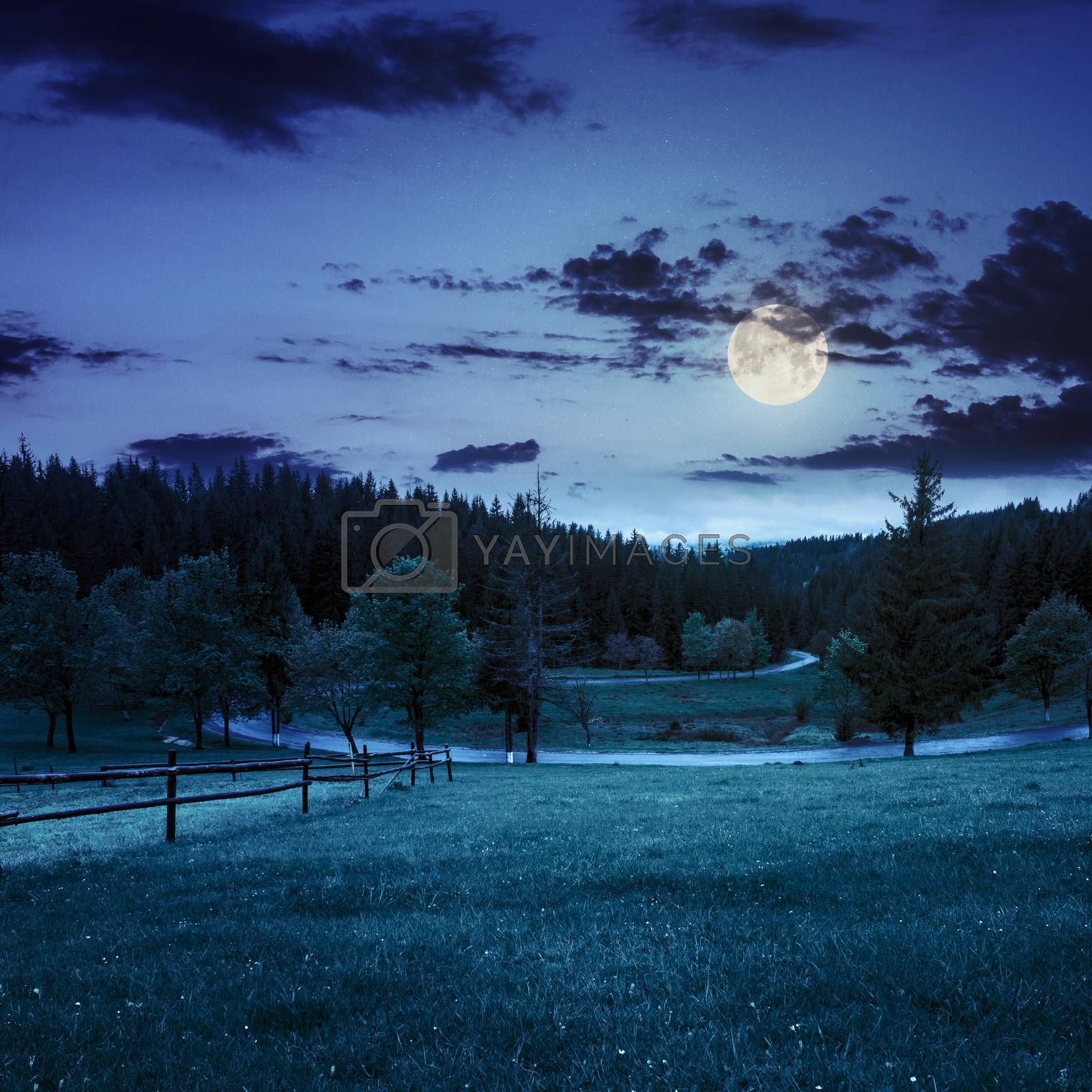 fence on meadow near forest at night by Pellinni