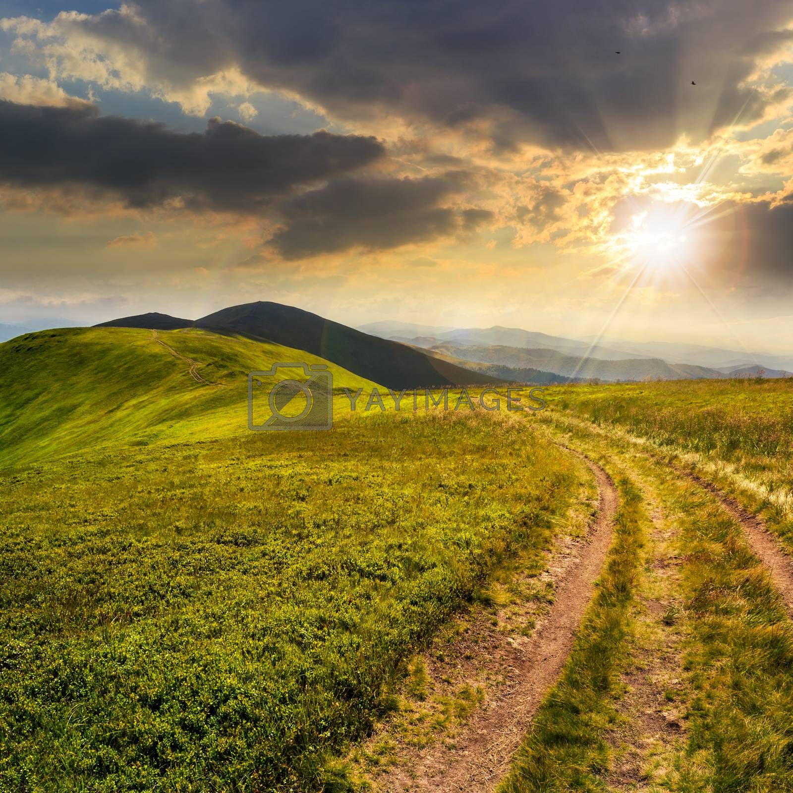 path on the mountain top at sunset by Pellinni