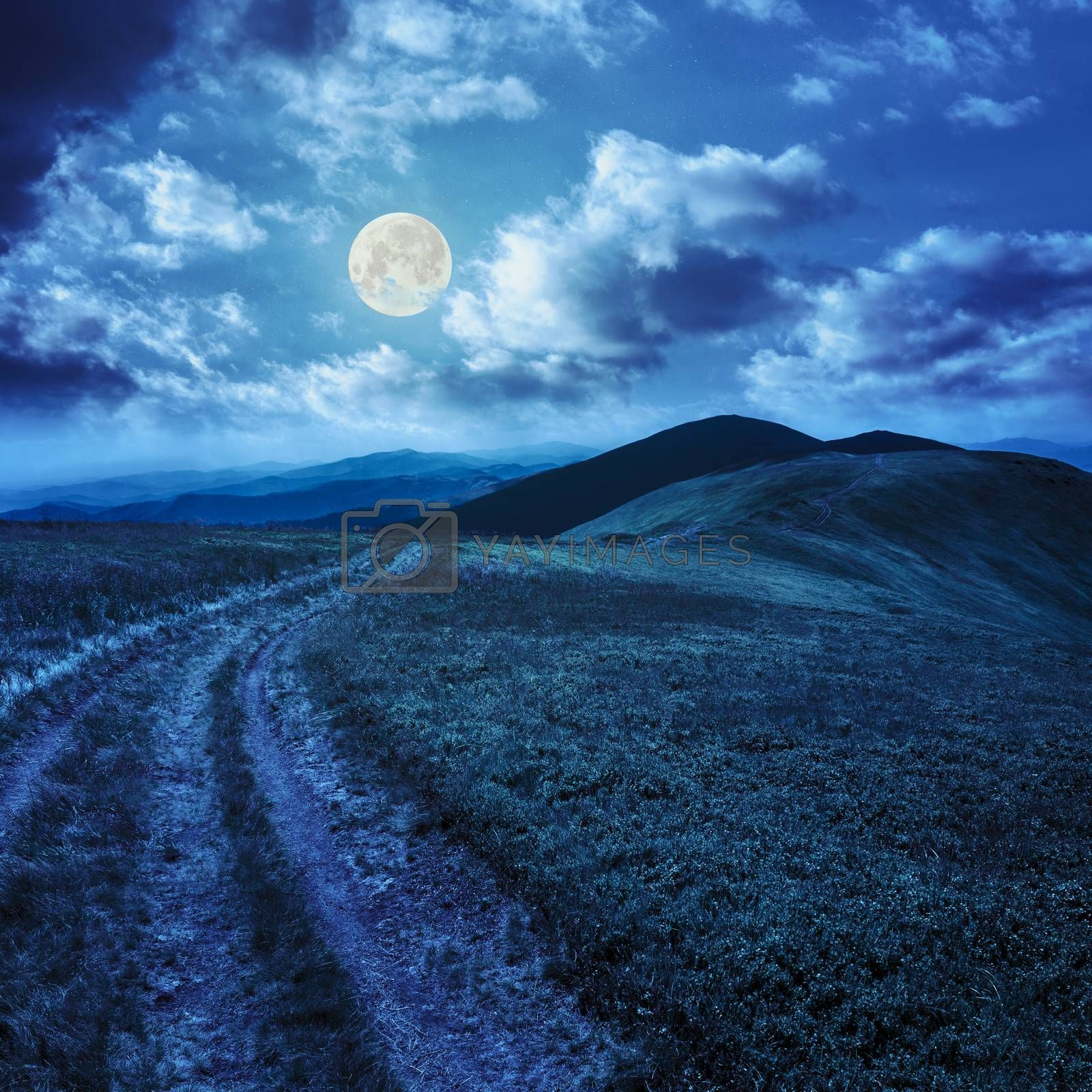 path on the mountain top at night by Pellinni