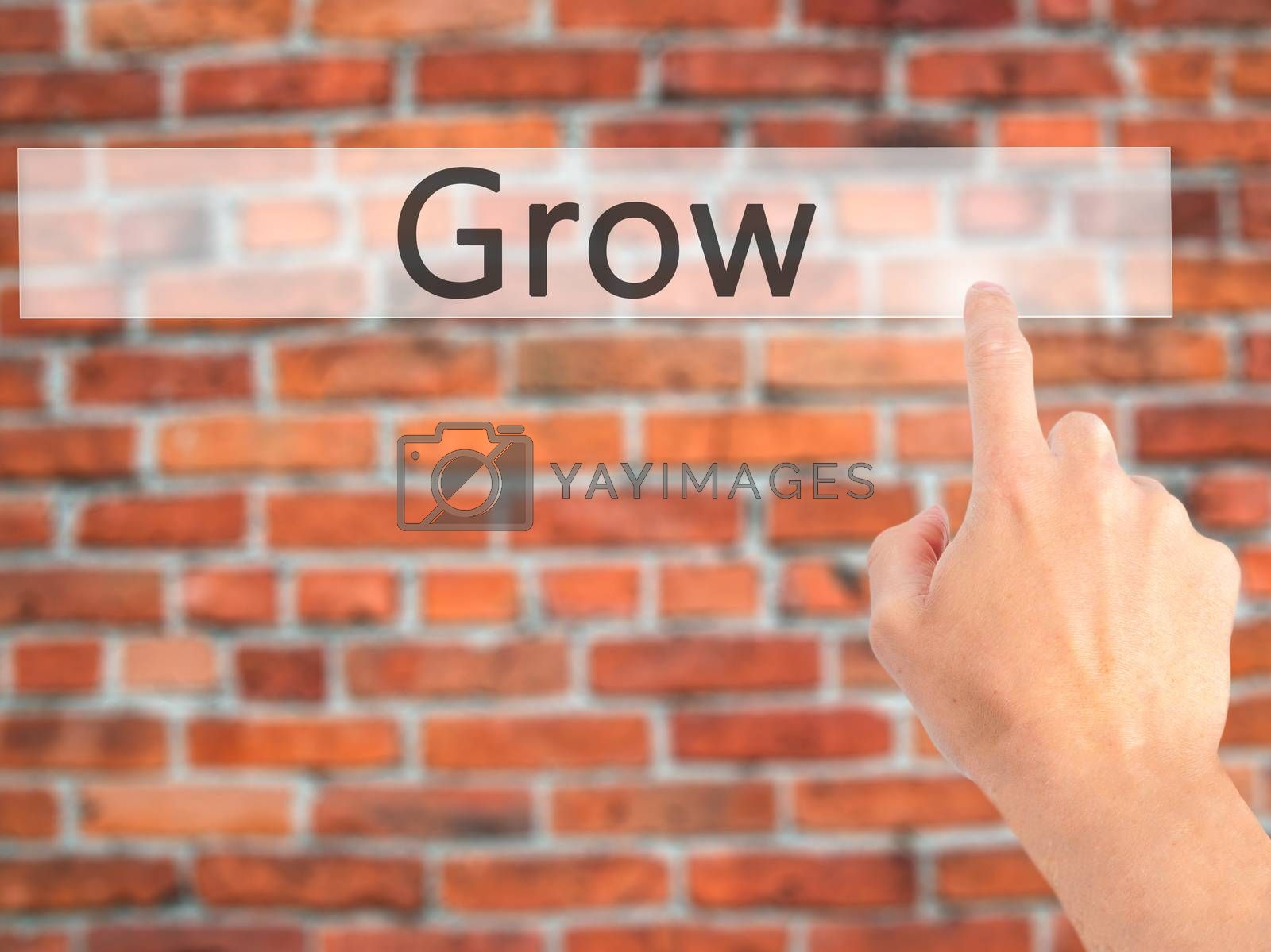 Grow - Hand pressing a button on blurred background concept on v by netsay.net